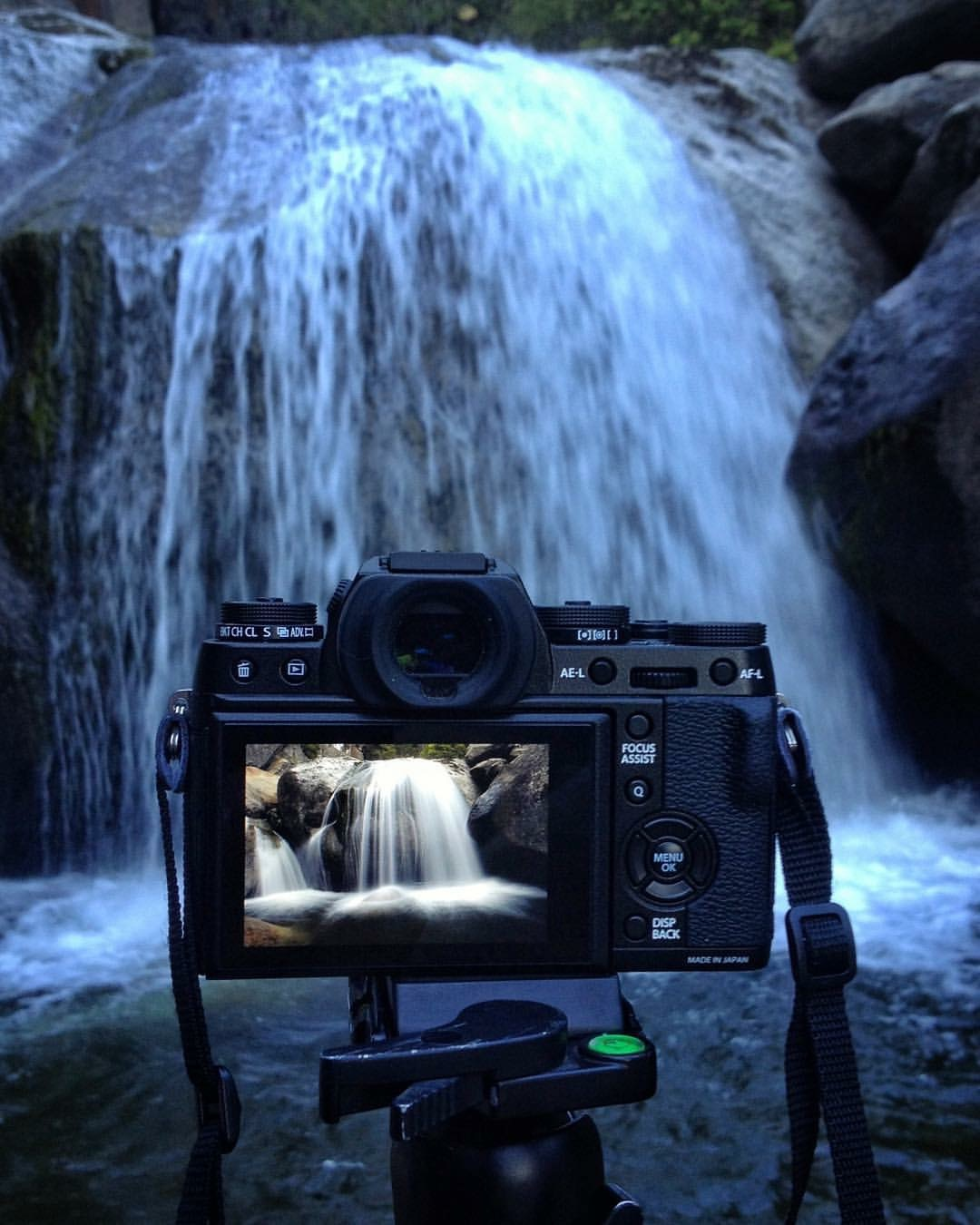 The beauty trickles inside of the camera...