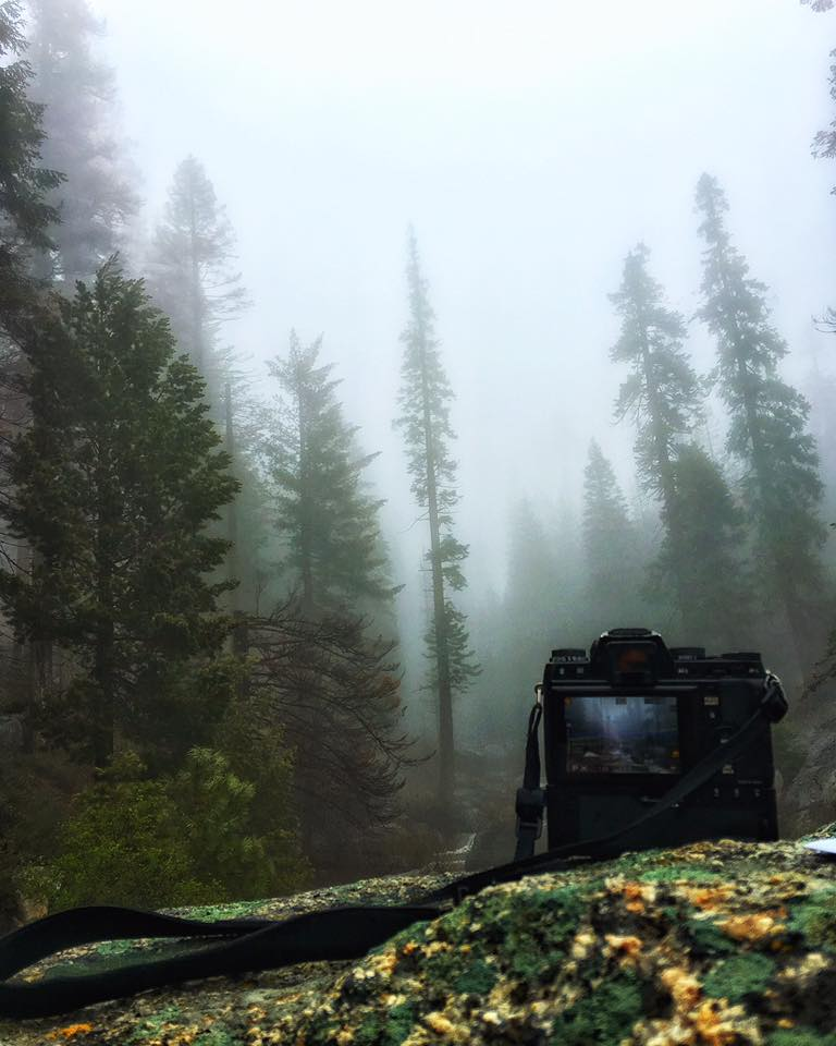 Capturing a moody scene in Sequoia National Park with the Fujifilm X Series.
