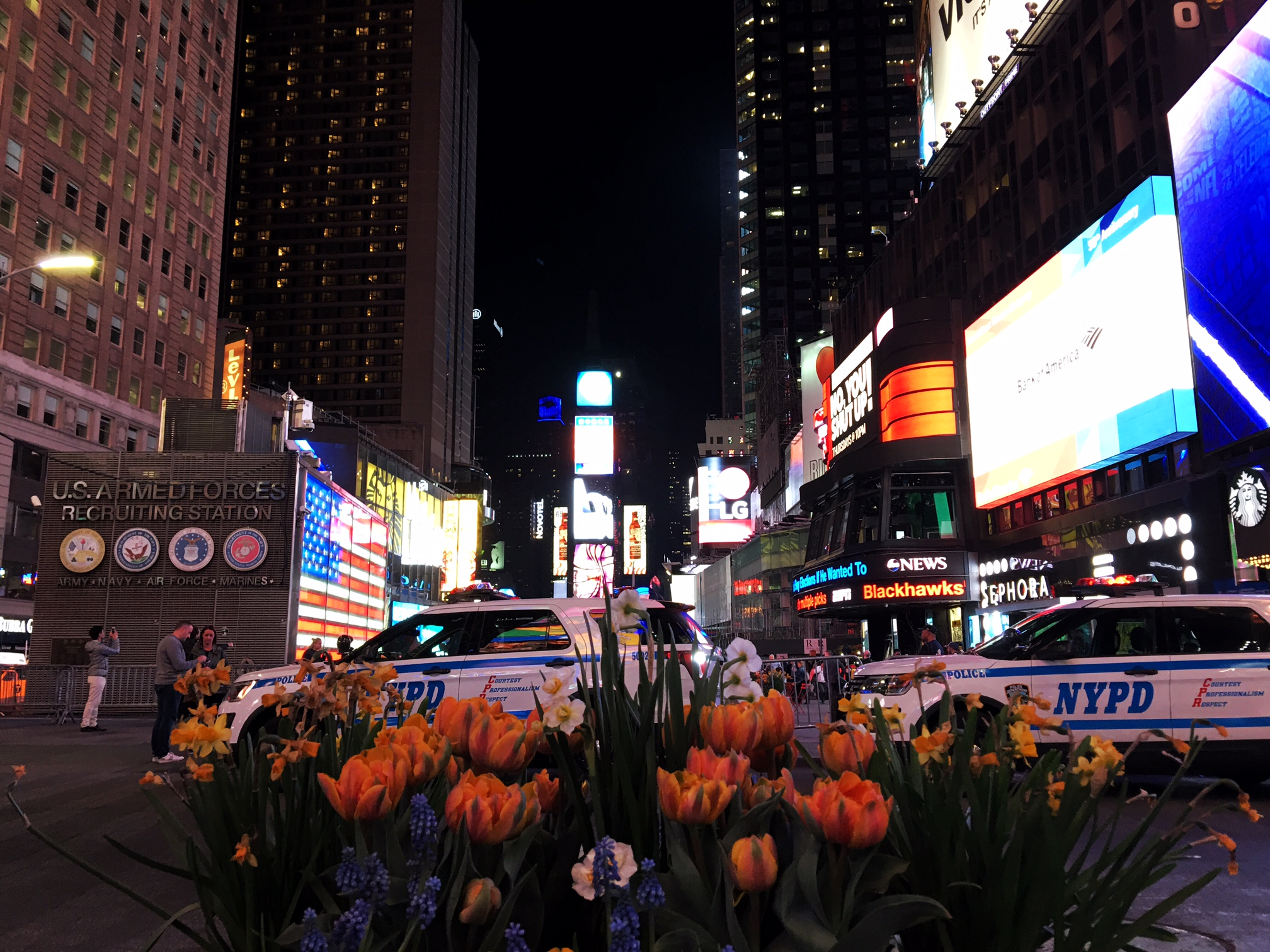 Had to make a stop in New York so sought out some nature -- tulips in Times Square.