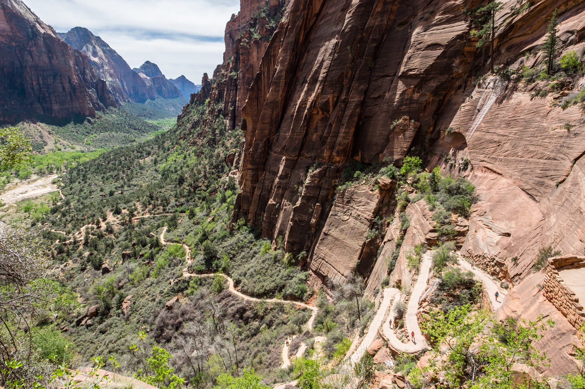 A peer down the Western Rim Trail en route to Angel's Landing and Scout's Lookout provides views of switchbacks zig-zagging down to the valley floor.