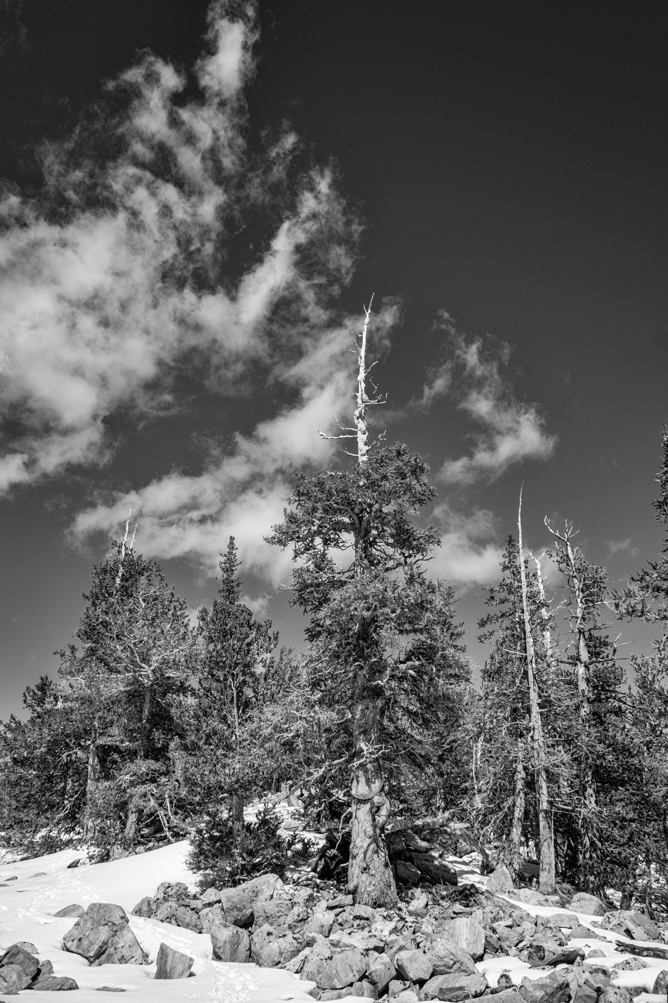Great Basin National Park - 058.jpg