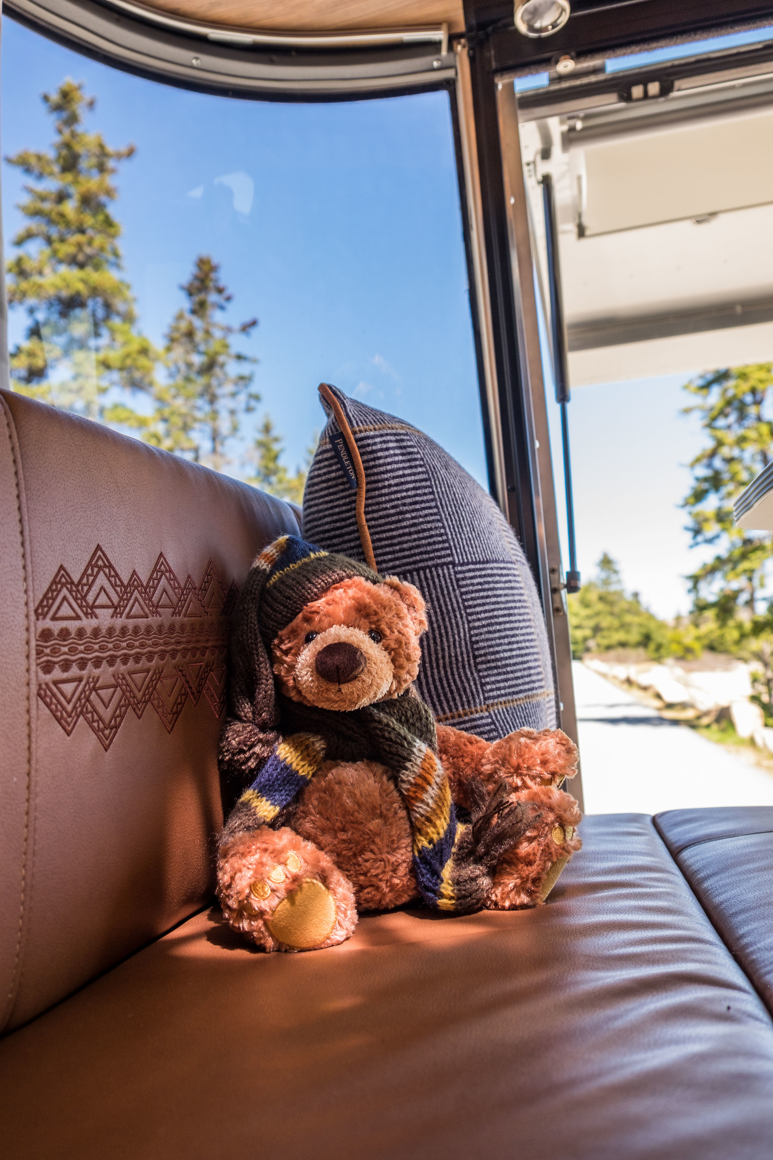 Coyote Butte Lucky Bear hangs out in the Pendleton Airstream in Maine.