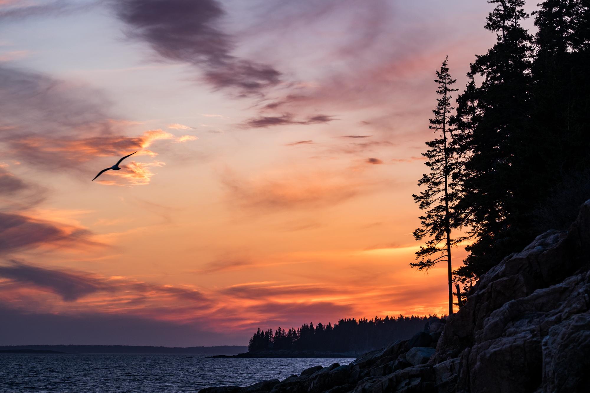 Acadia National Park - 012.jpg