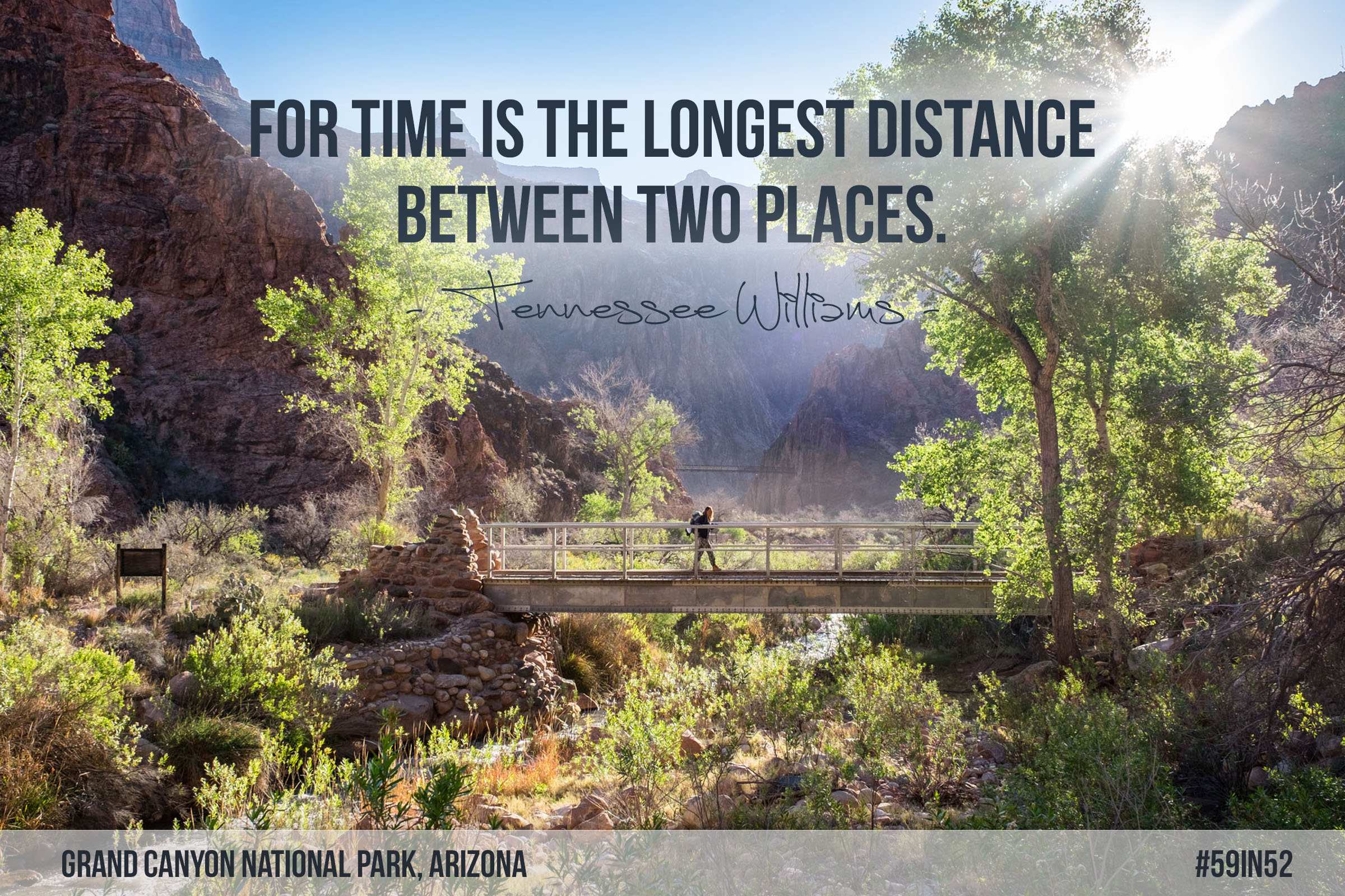 'For time is the longest distance between two places.' - Tennessee Williams