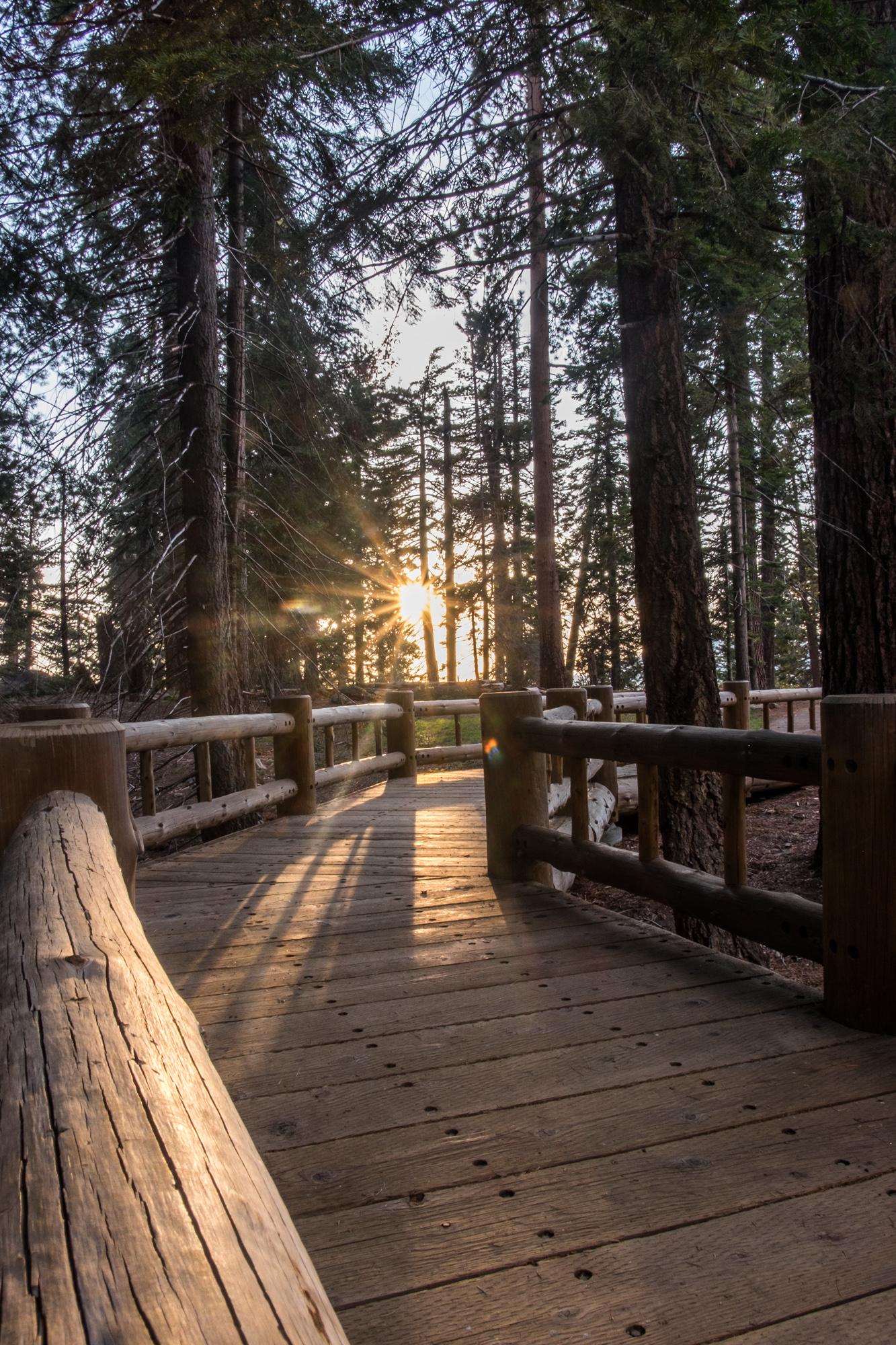 Sequoia National Park - 012.jpg