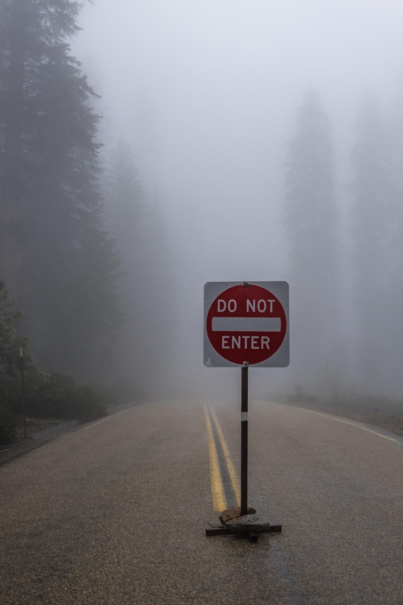 Sequoia National Park - 041.jpg