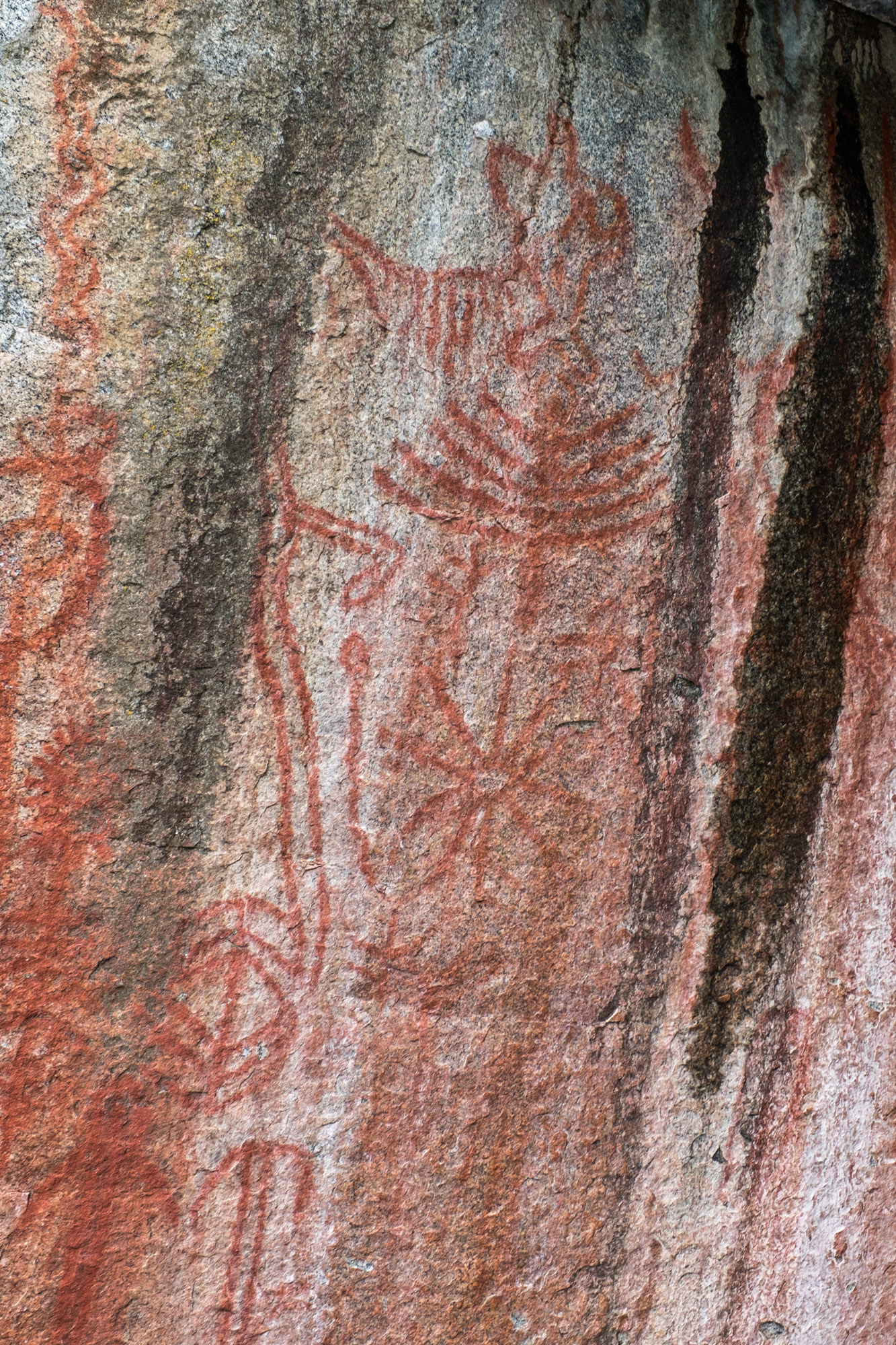 Petroglyphs at Hospital Rock.