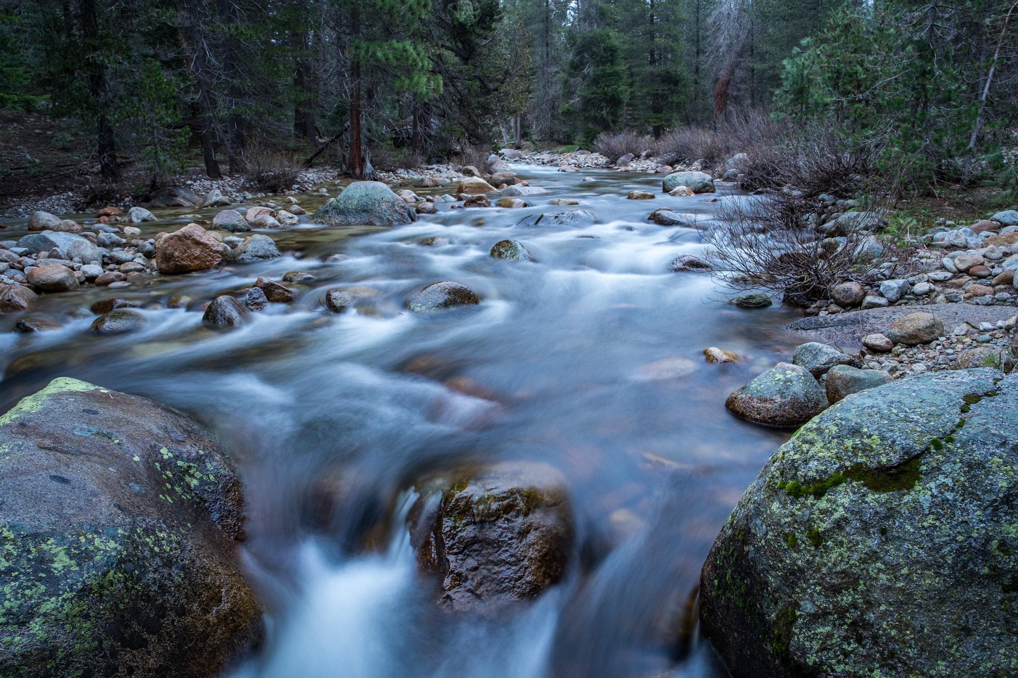 Sequoia National Park - 061.jpg