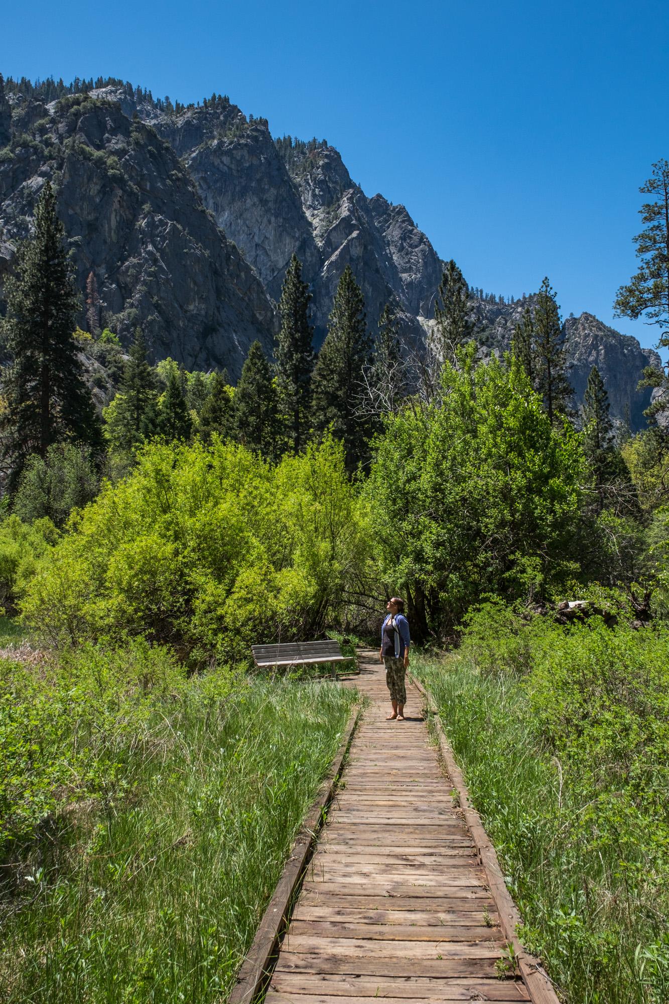 Kings Canyon National Park - 014.jpg