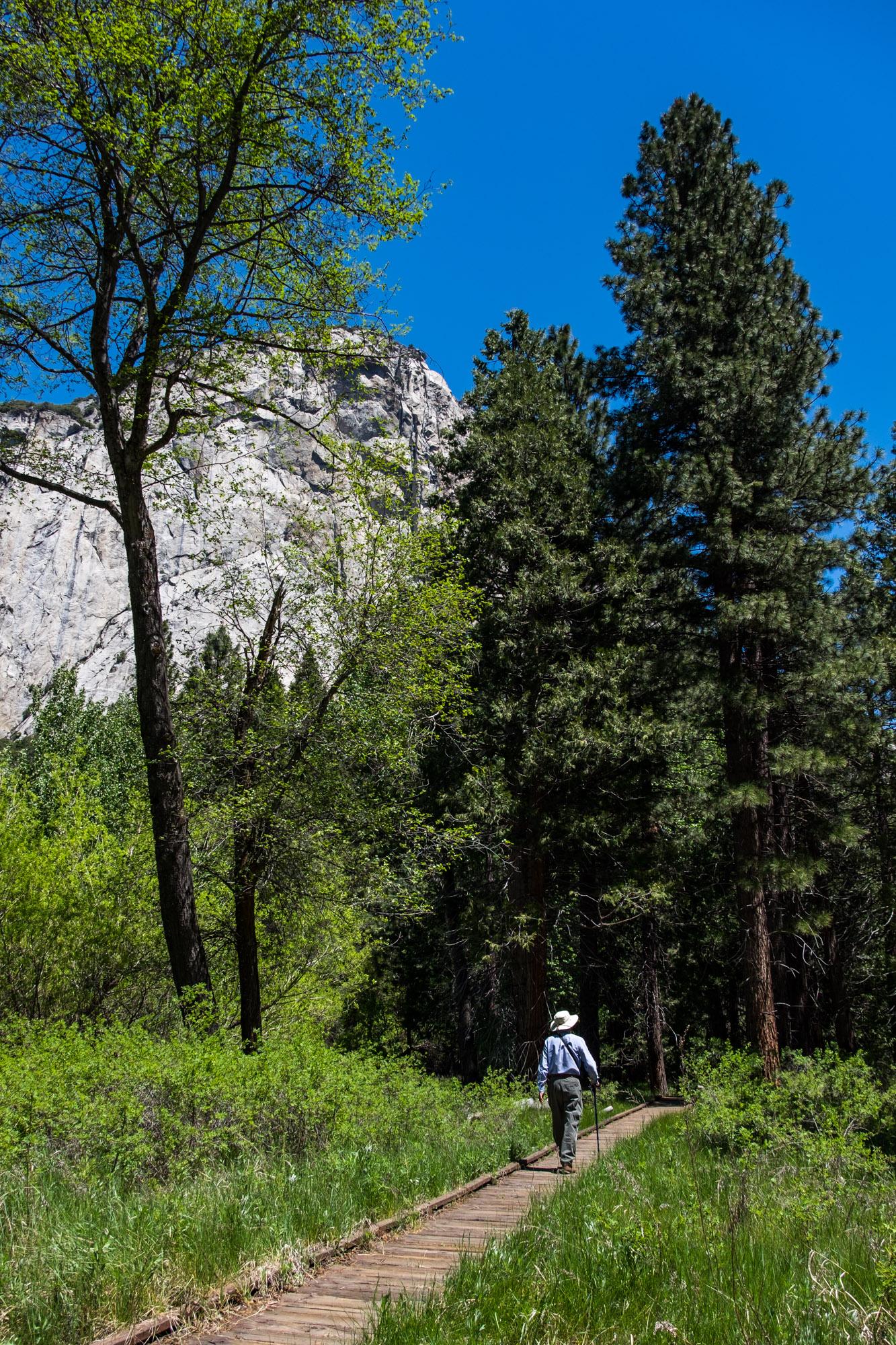 Kings Canyon National Park - 018.jpg