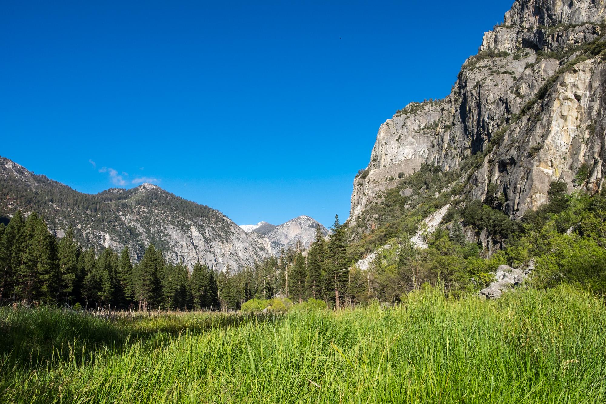Kings Canyon National Park - 019.jpg