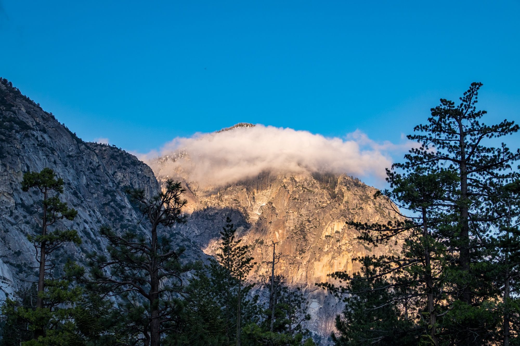 Kings Canyon National Park - 024.jpg
