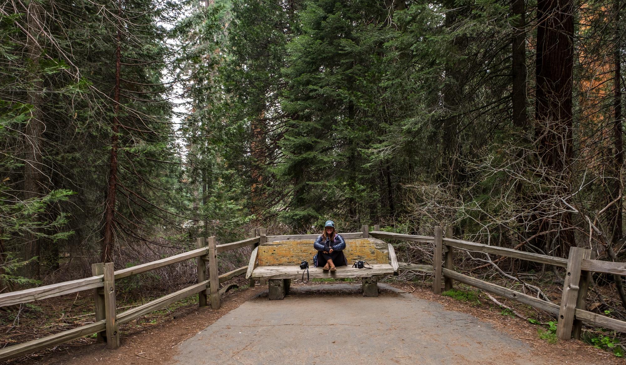 Kings Canyon National Park - 066.jpg