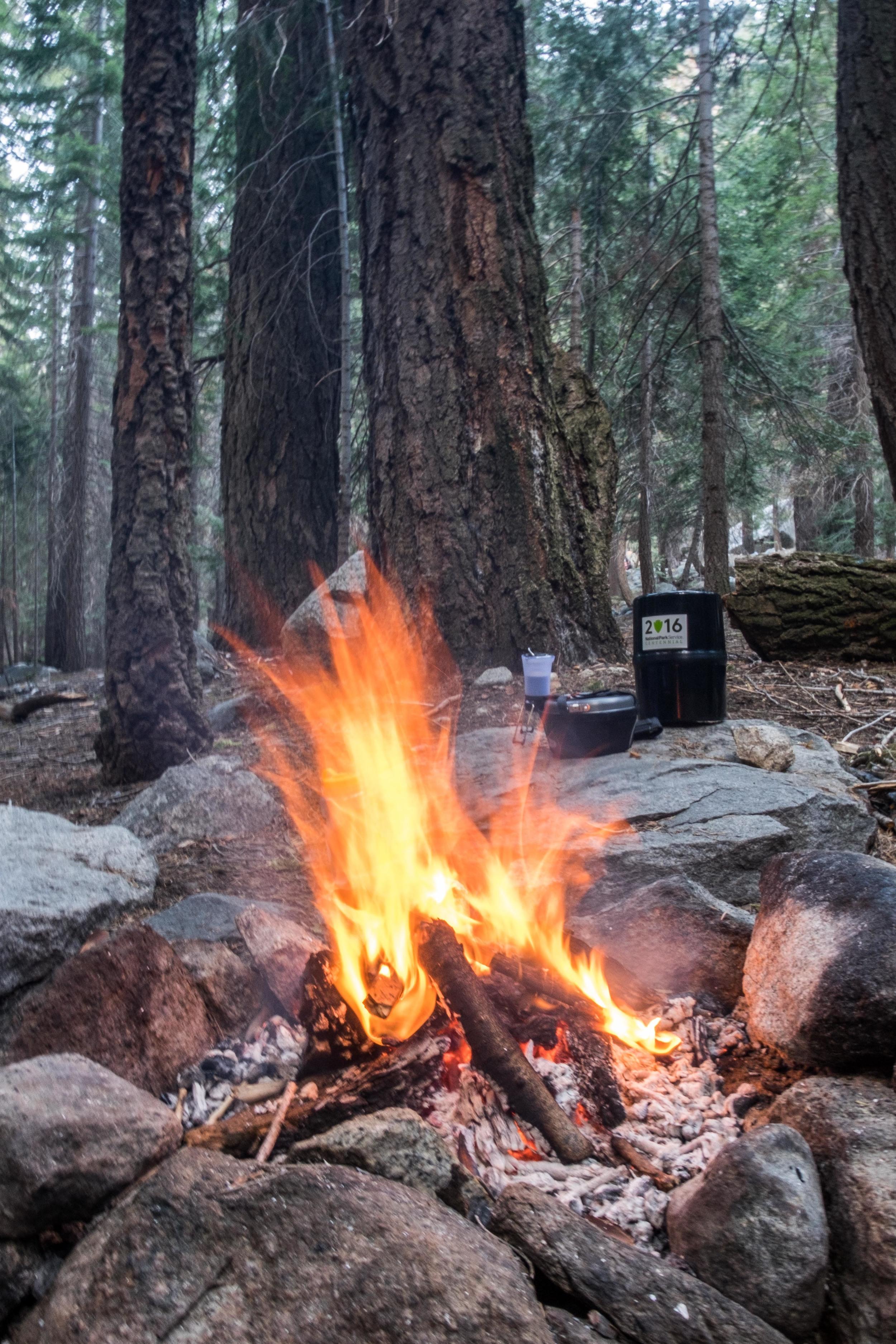 Let the free firewood roar!