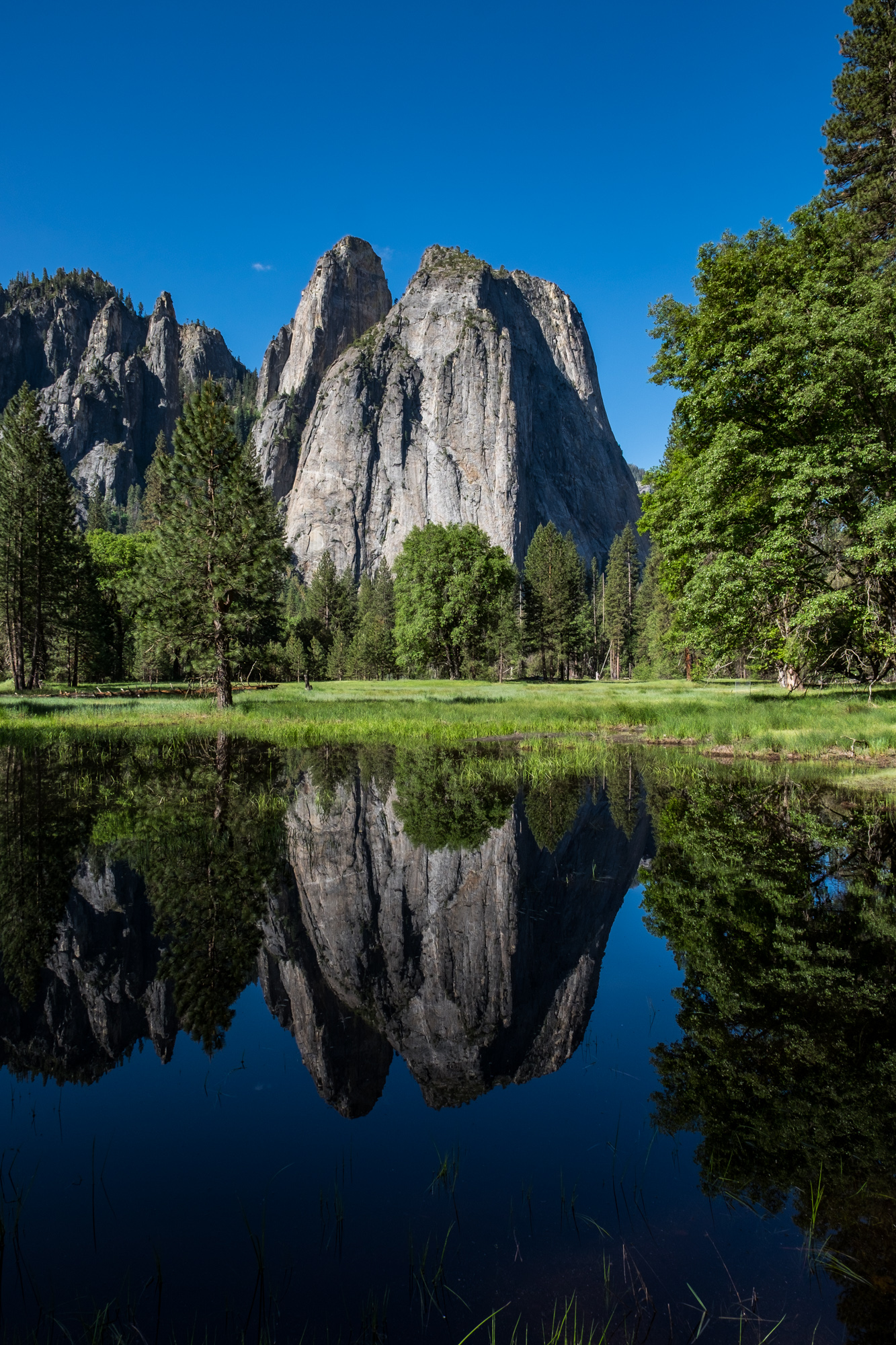 Back in Yosemite Valley, we found this beautiful reflection one early morning.