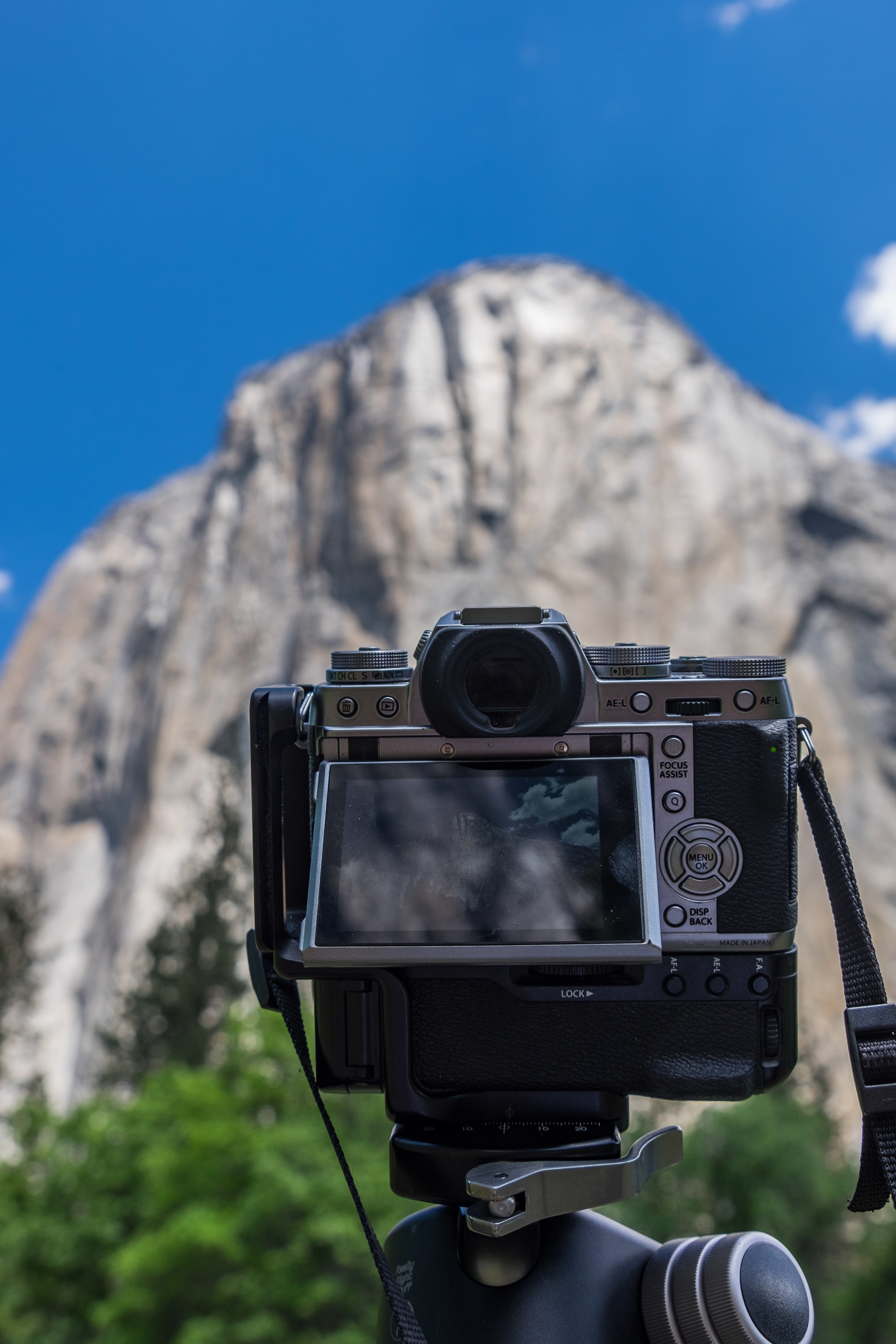 20160519-SP-Yosemite National Park-_DSF4659.jpg
