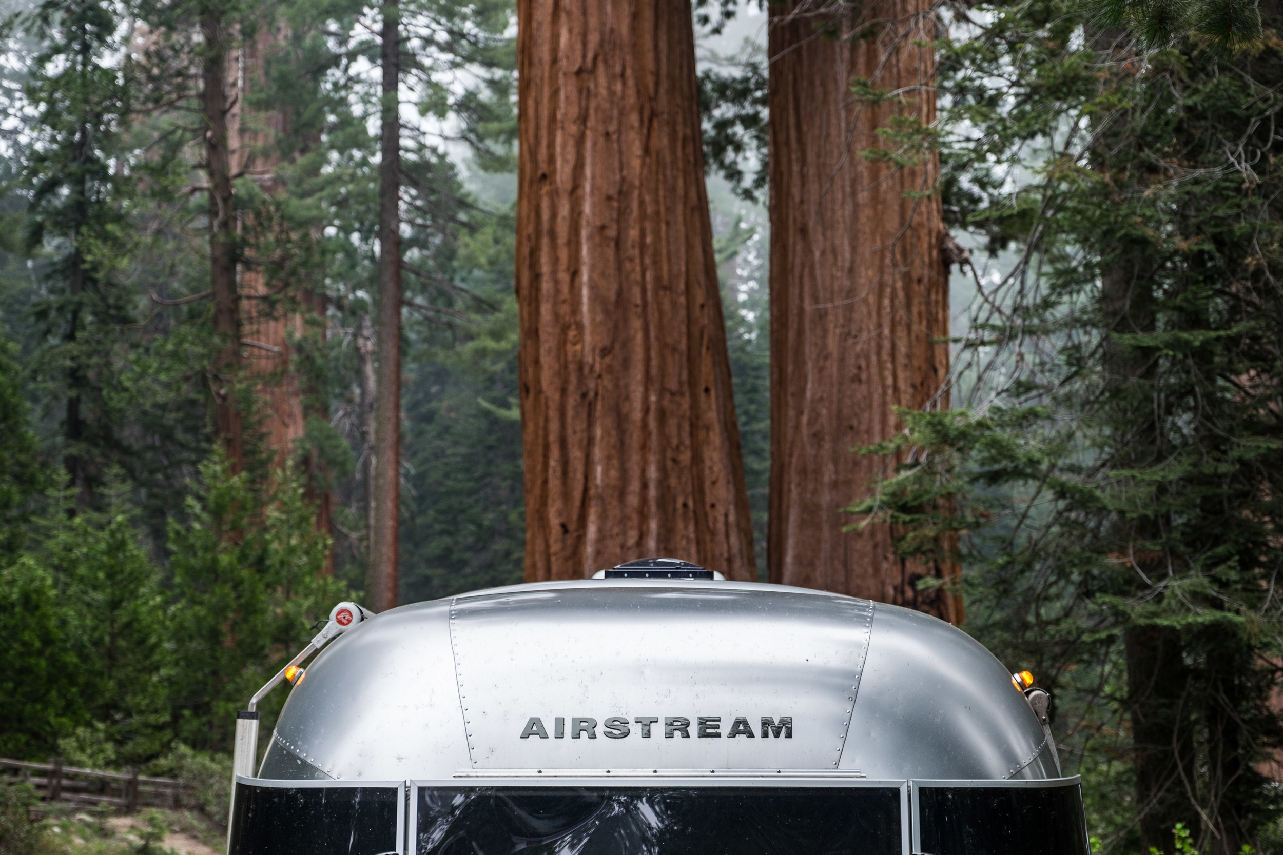 Airstream and the trees...