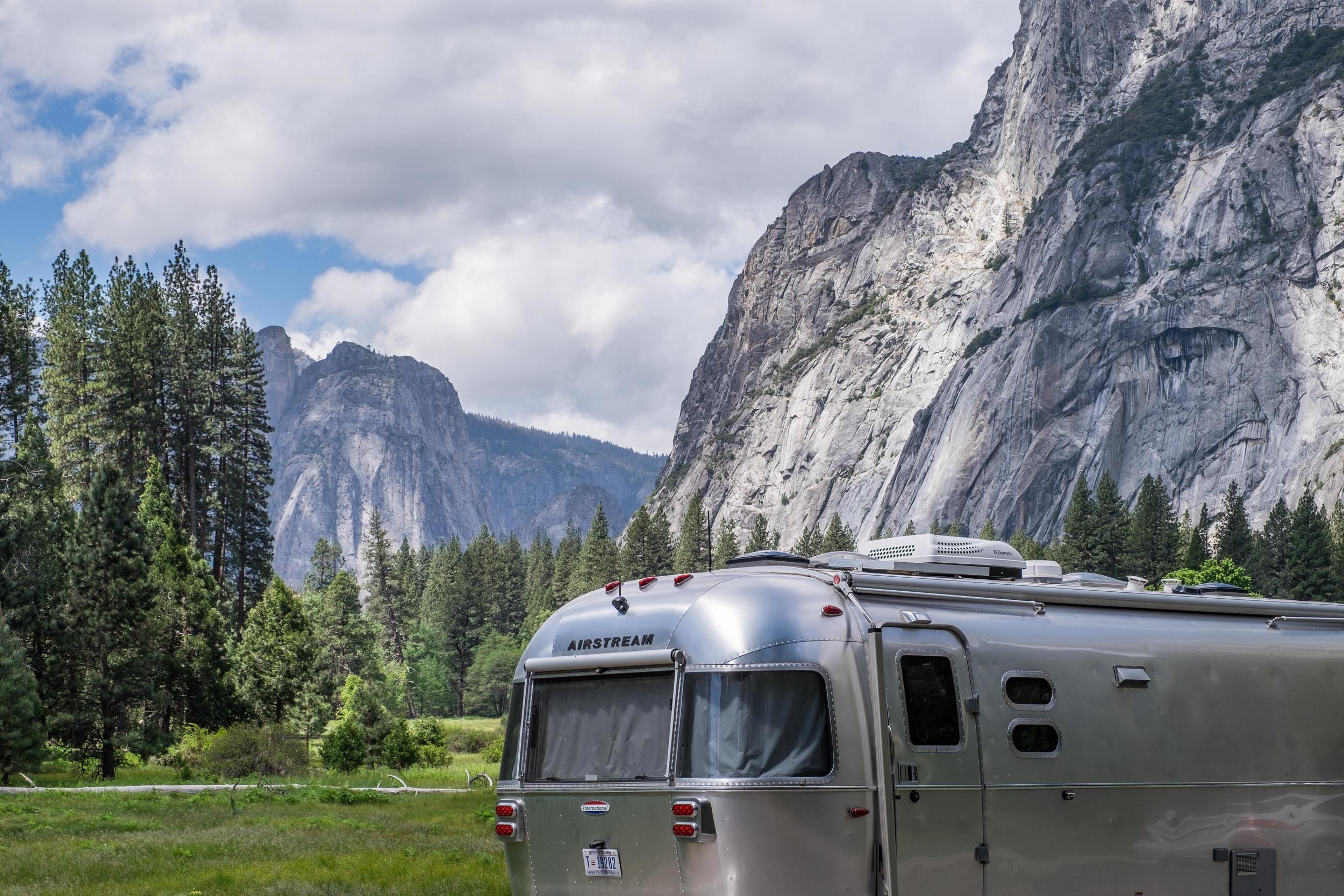Wally wanders the Yosemite Valley floor.