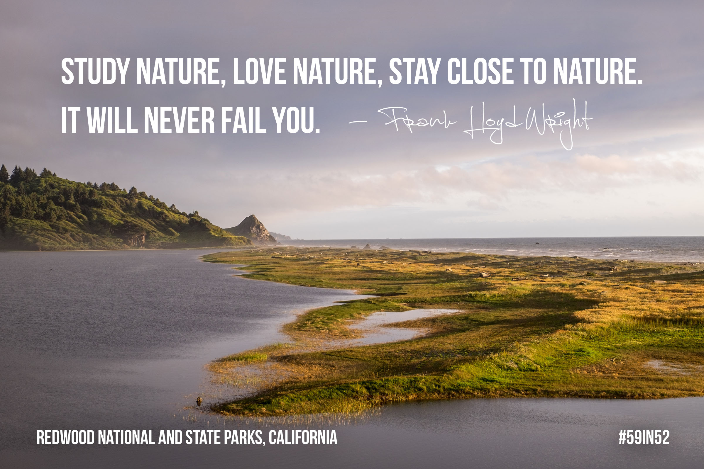 """Study nature, love nature, stay close to nature. It will never fail you."" – Frank Lloyd Wright"