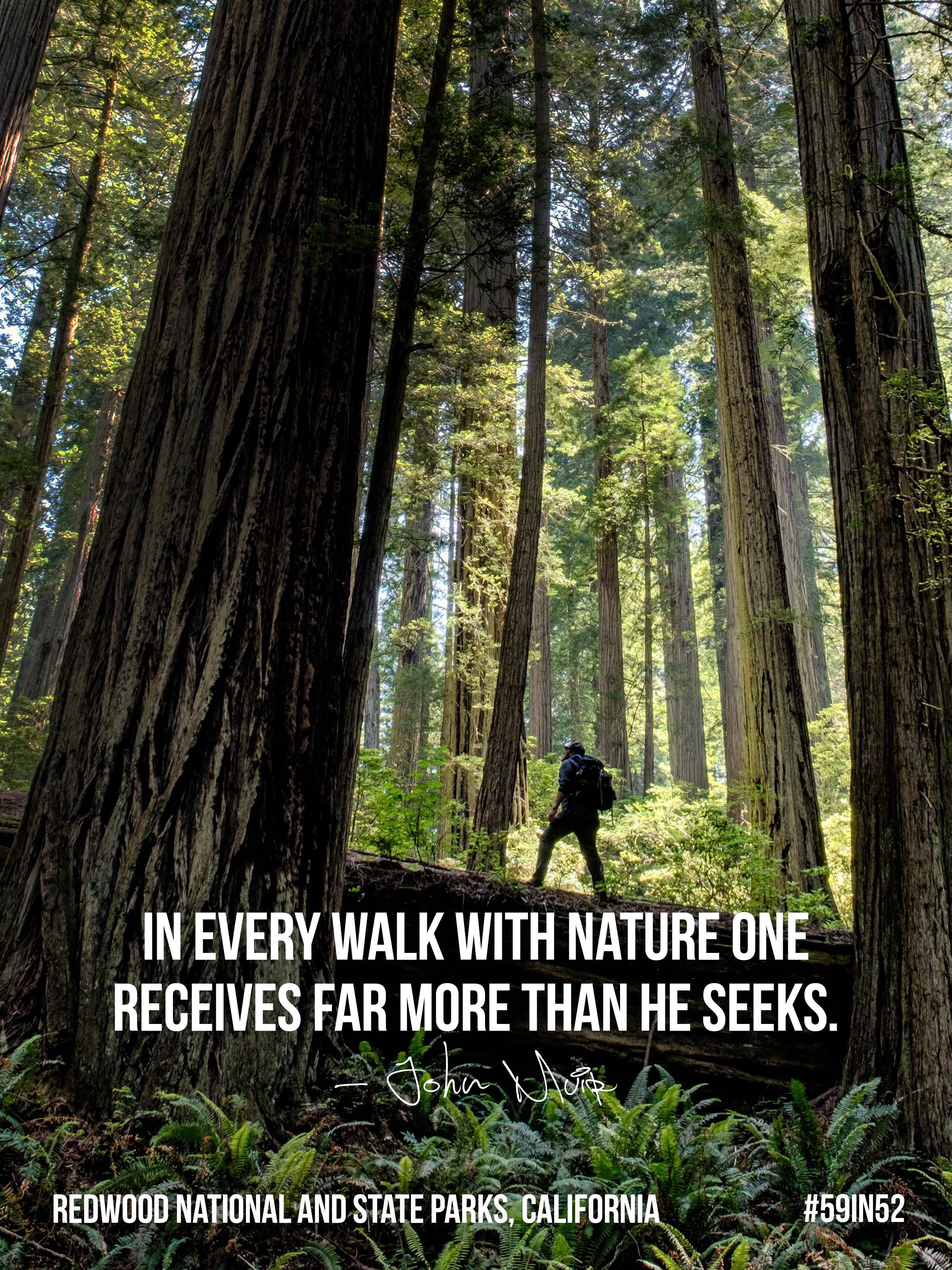 """In every walk with Nature one receives far more than he seeks.""    ― John Muir"