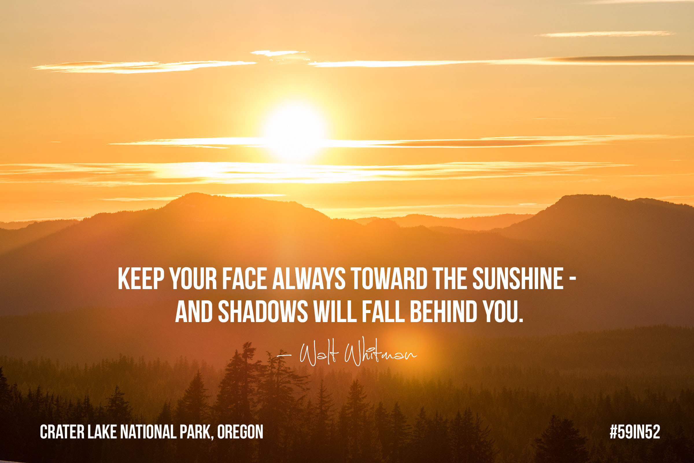 """""""Keep your face always toward the sunshine - and shadows will fall behind you."""" - Walt Whitman"""