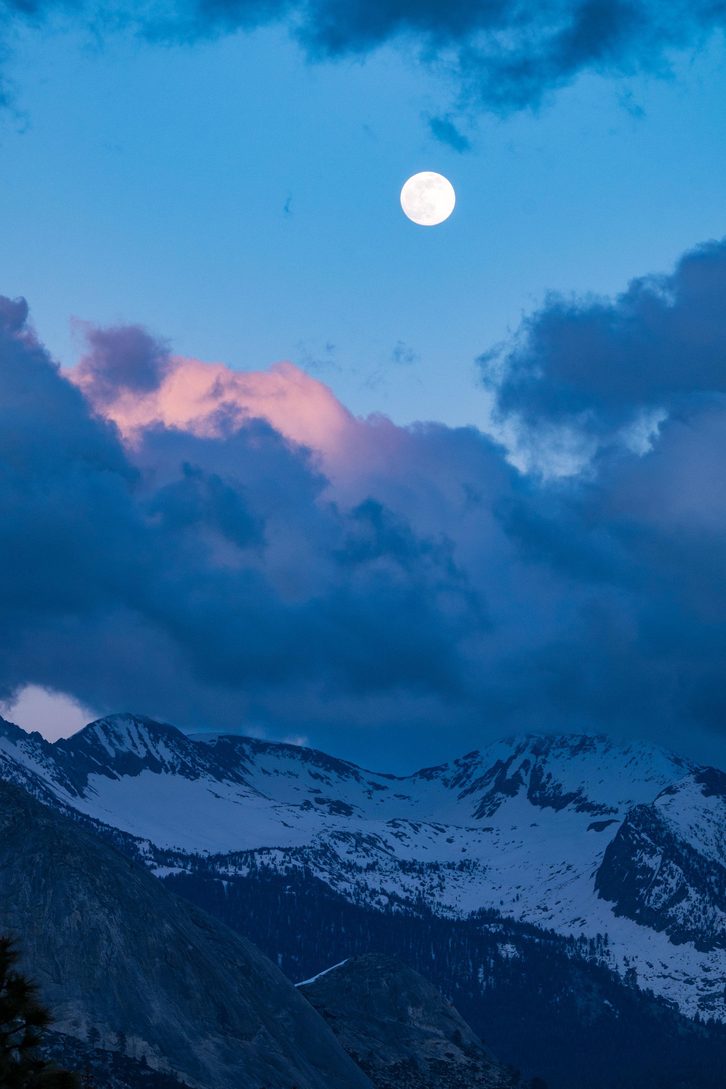 20160520-JI-Yosemite National Park-_DSF7347.jpg