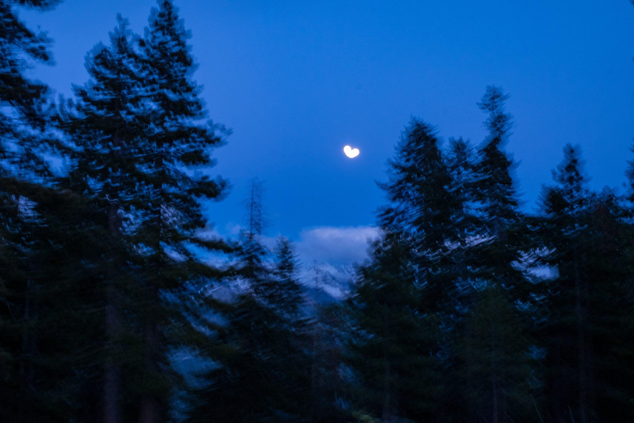 20160520-JI-Yosemite National Park-_DSF7355.jpg