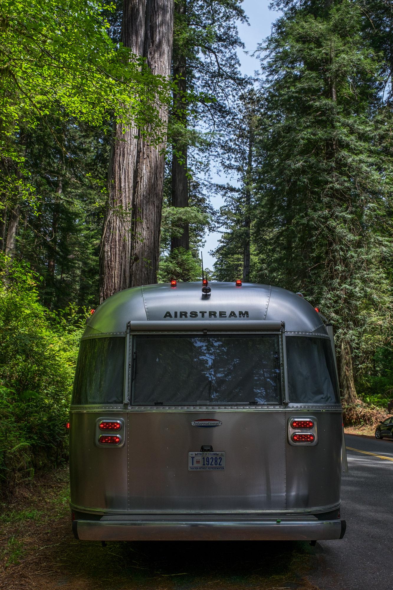 Redwoods National Park - 035.jpg