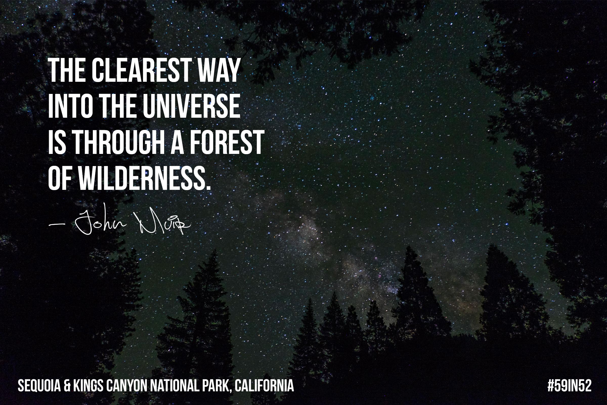 """The clearest way into the universe is through a forest of wilderness."" – John Muir"