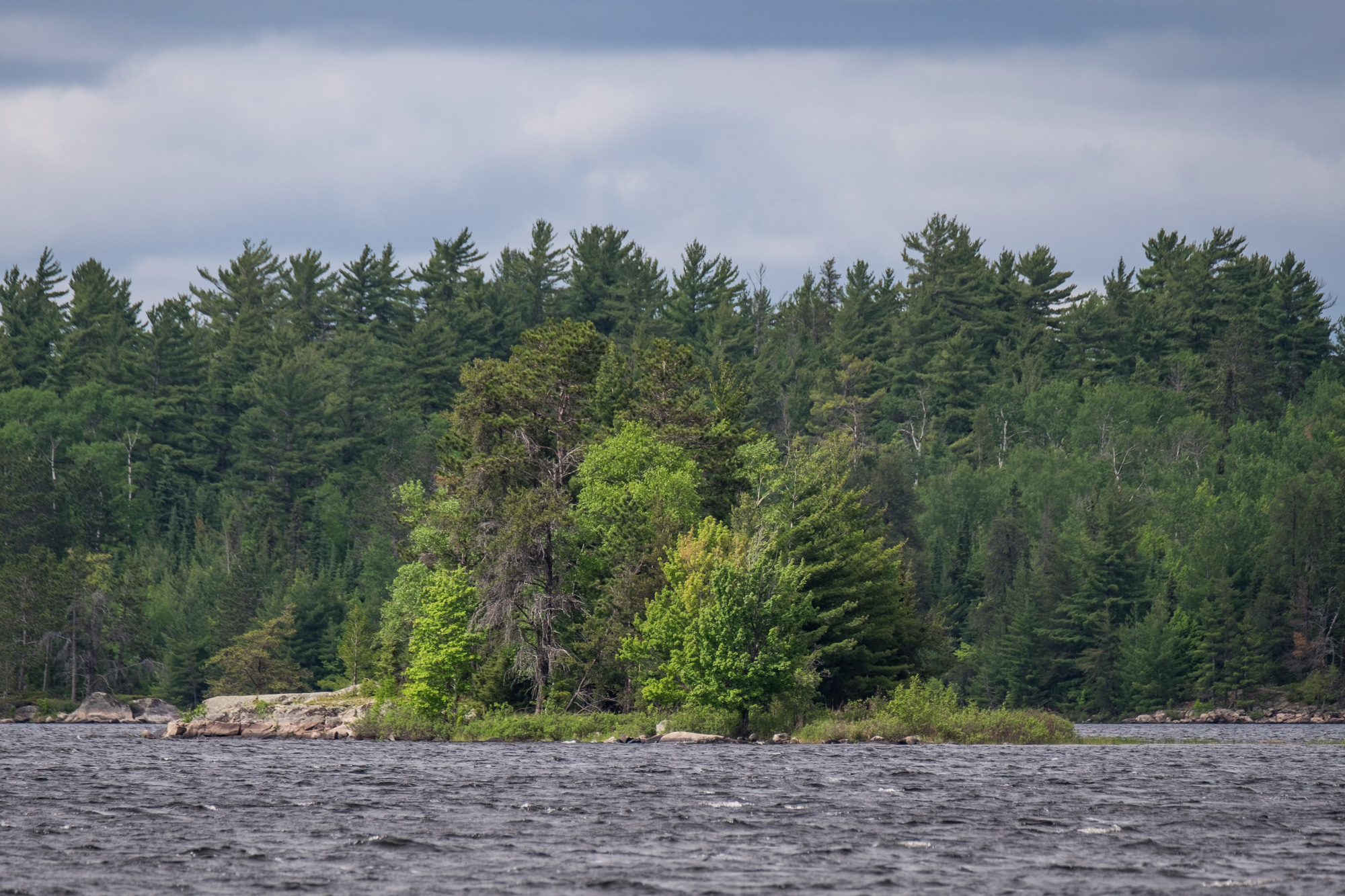 Voyageurs National Park is a wild waterland on the Minnesota/Canada border where anglers, campers, paddlers, and boaters from all over the world find solitude in the northern lakes region.