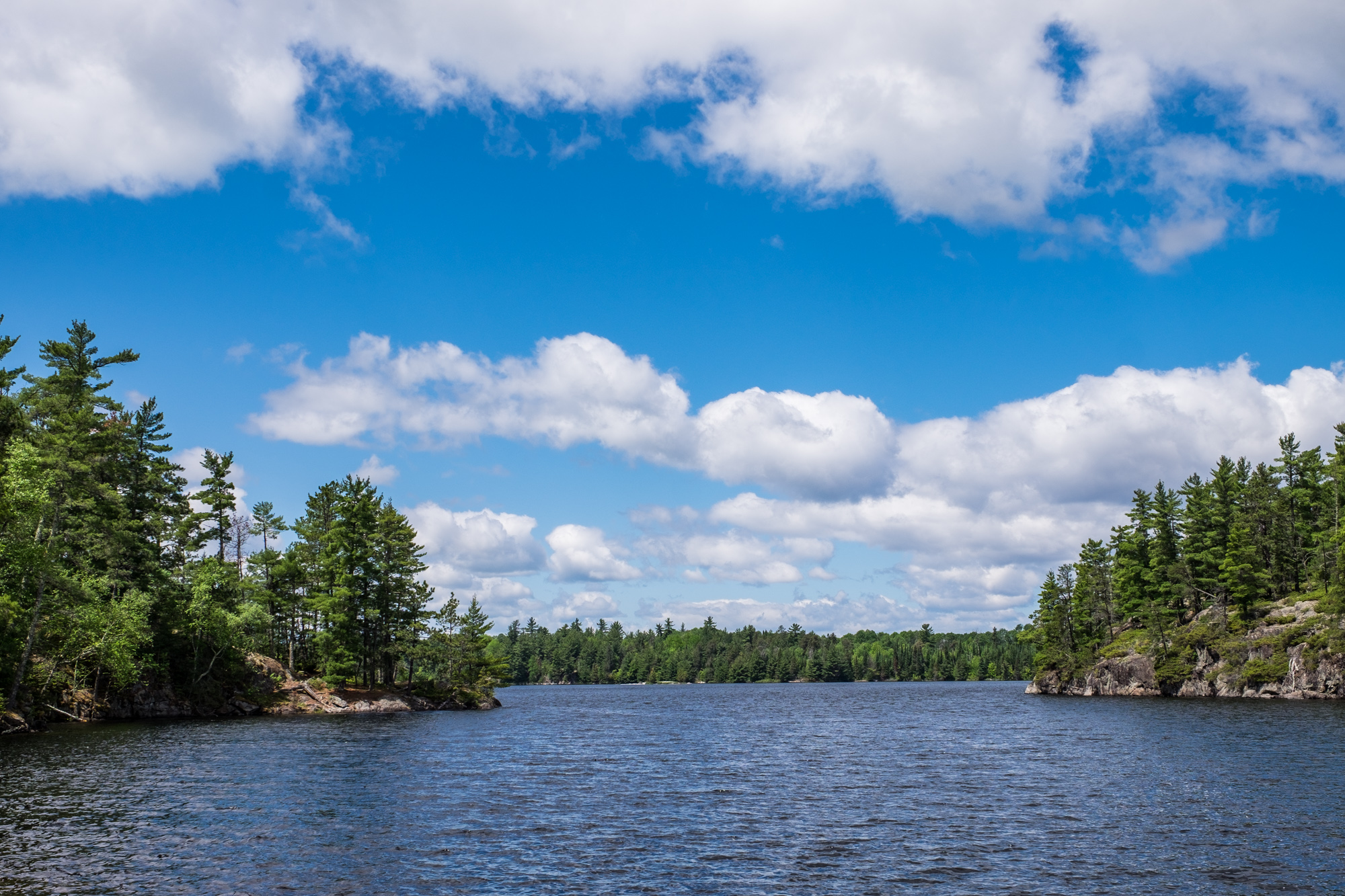 This is a pretty typical view of Voyageurs National Park.