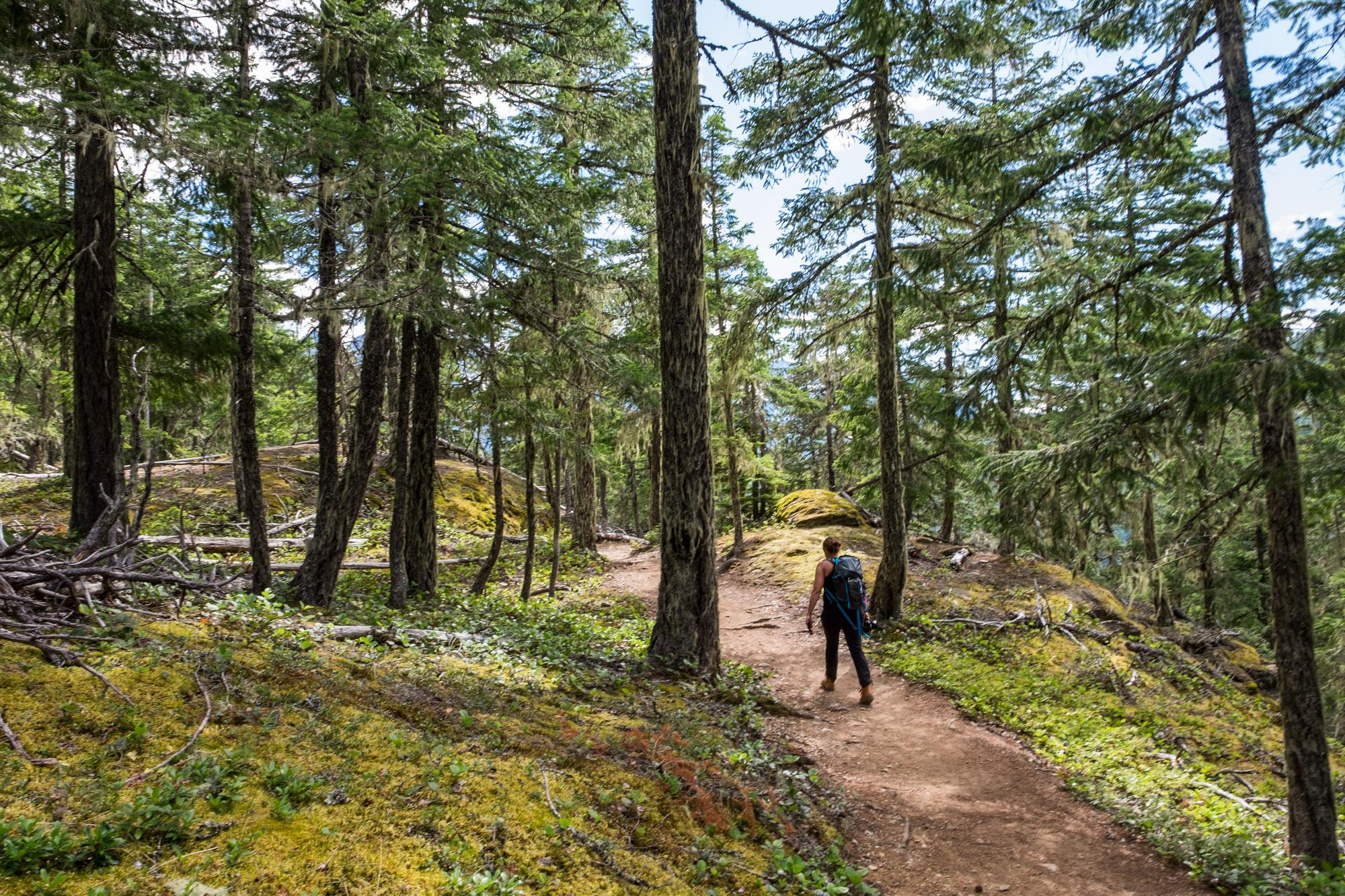 North Cascades National Park - 025.jpg