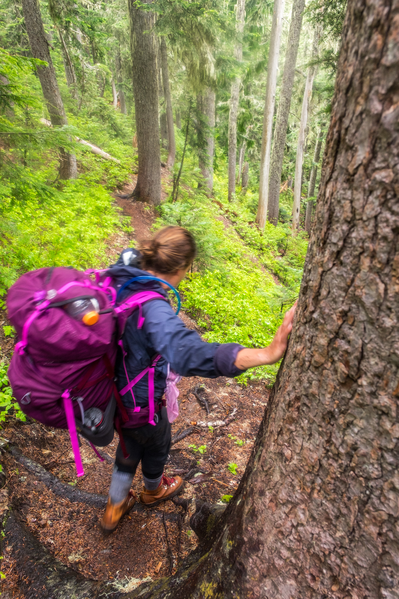 North Cascades National Park - 048.jpg