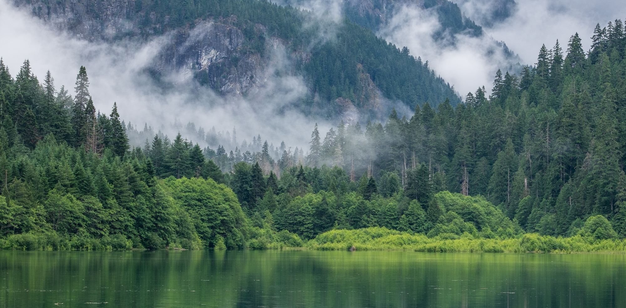 Every shade of immaculate green can be found in the North Cascades — it's a never ending deep breath of the cleanest, greenest air!