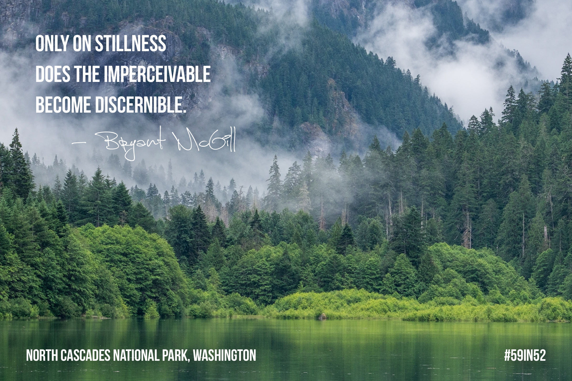 """Only on stillness does the imperceivable become discernible."" - Bryant McGill"