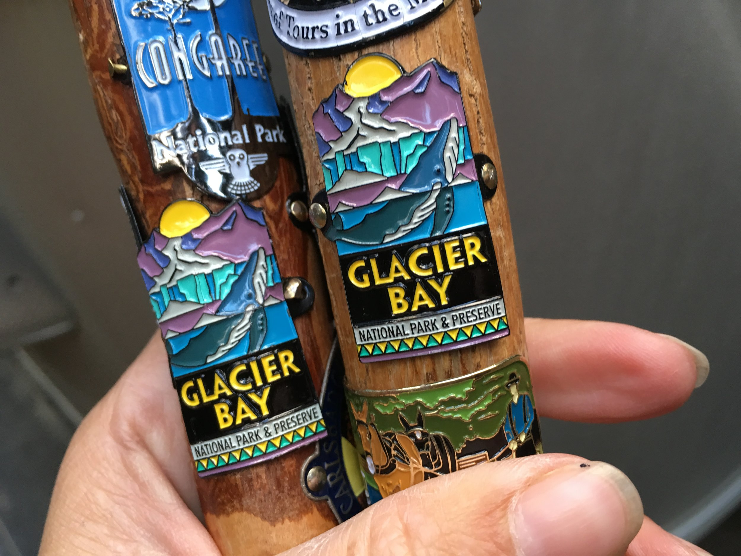 Hiking stick medallions from Glacier Bay National Park in Alaska.