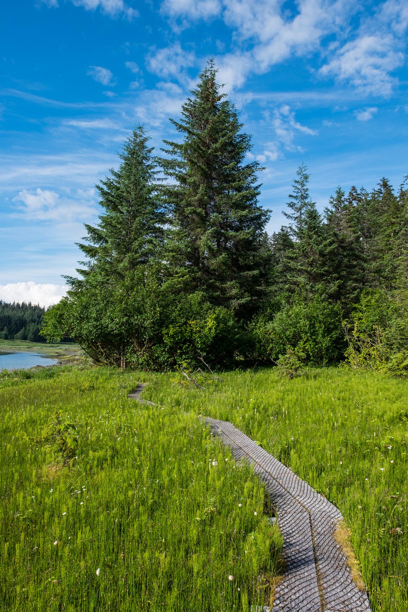 Glacier Bay National Park - 036.jpg