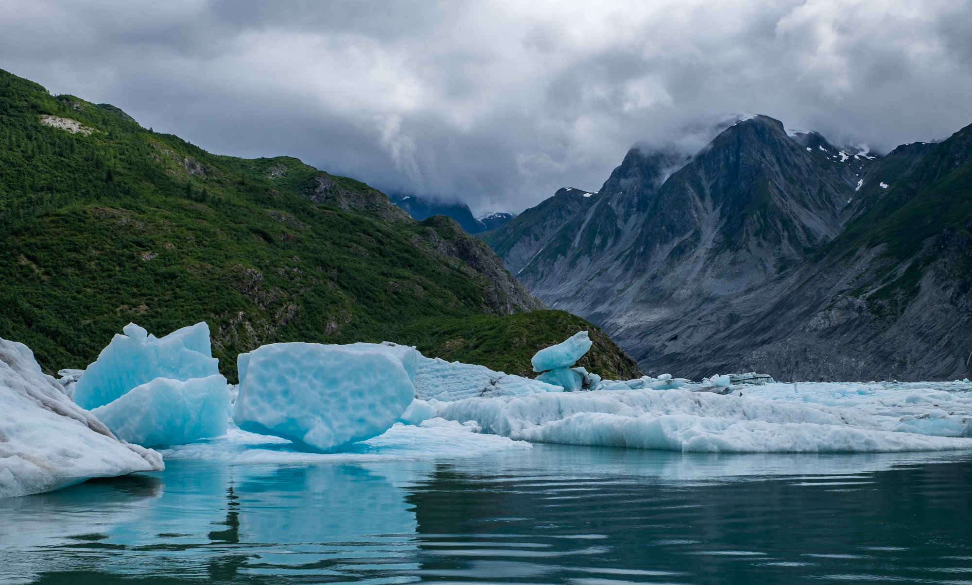 Glacier Bay National Park - 042.jpg