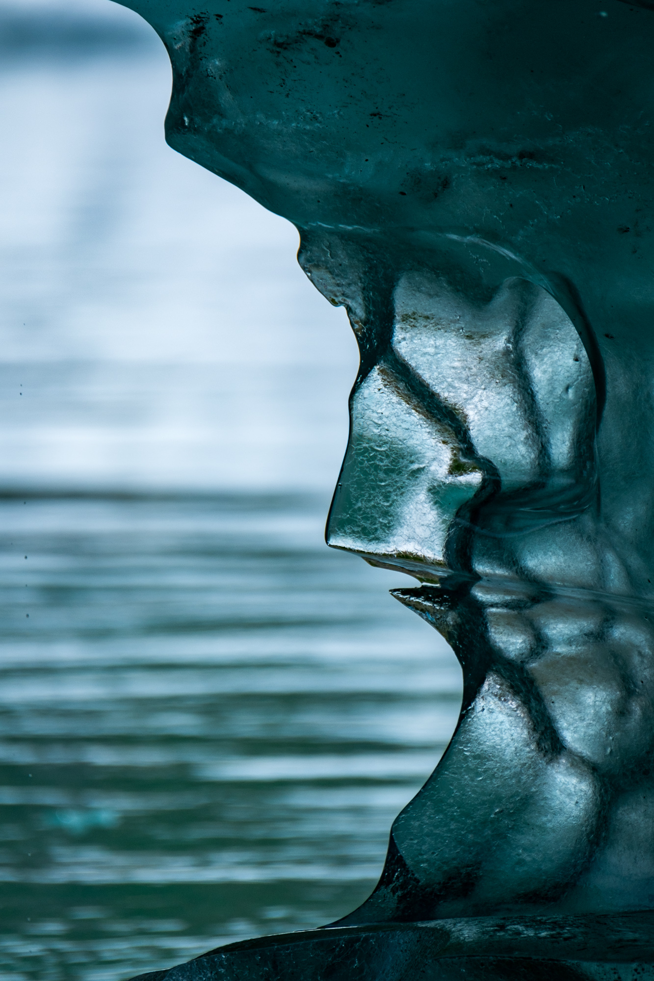 Do you see a face in the ice?