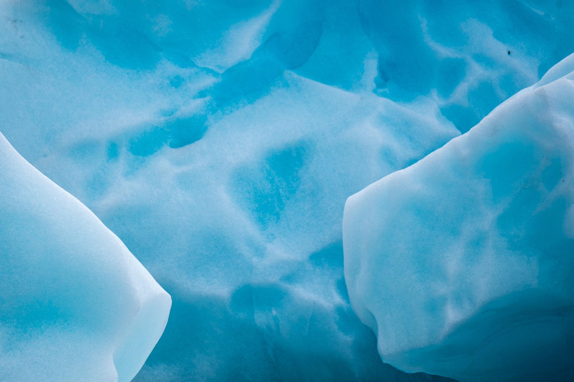 Glacier Bay National Park - 049.jpg
