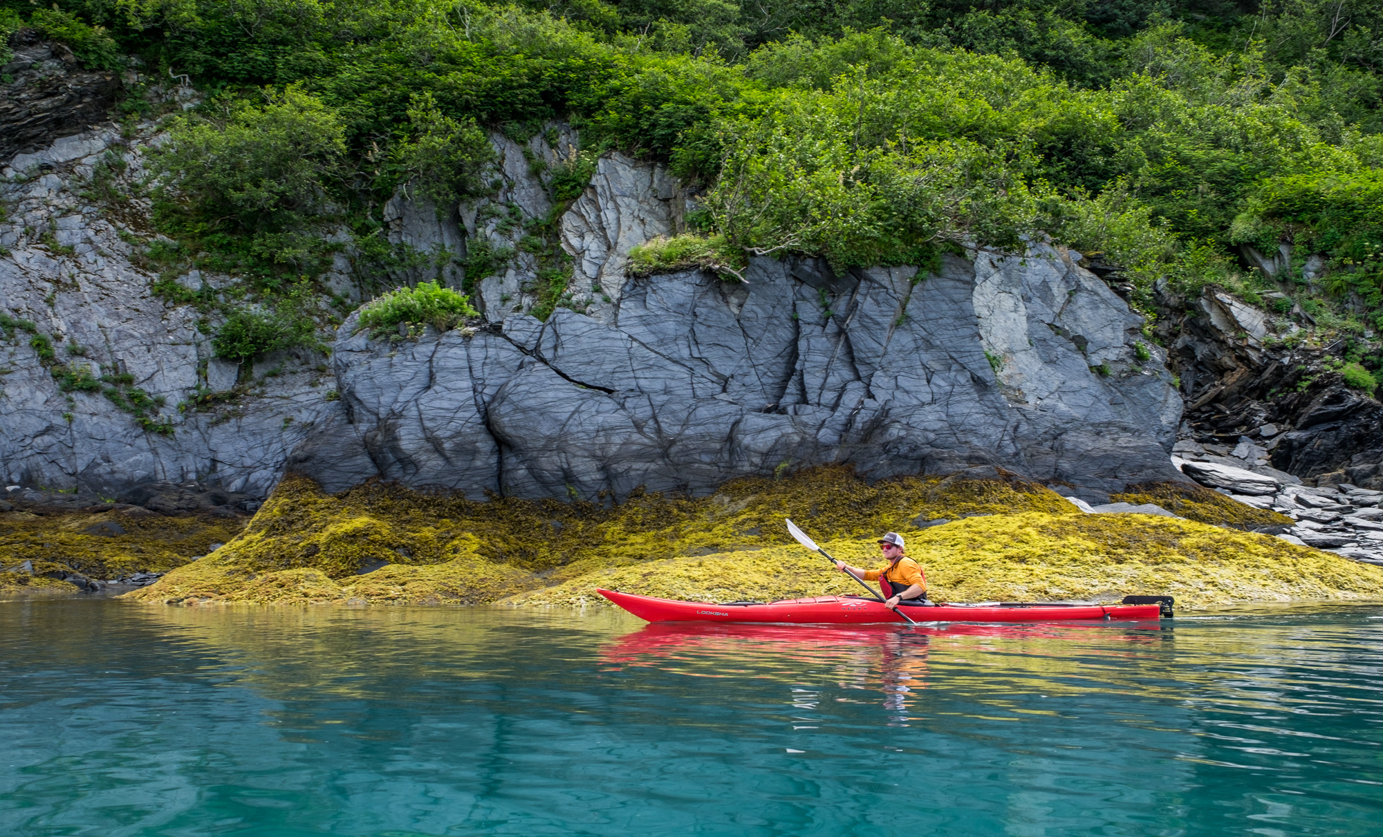 Once at Aialik Glacier, we transferred to kayaks and started exploring.