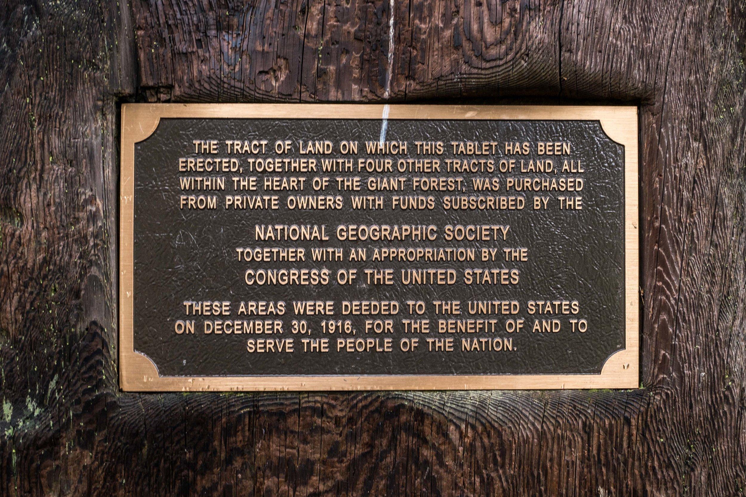 20160506-JI-Sequoia National Park-_DSF8928.jpg