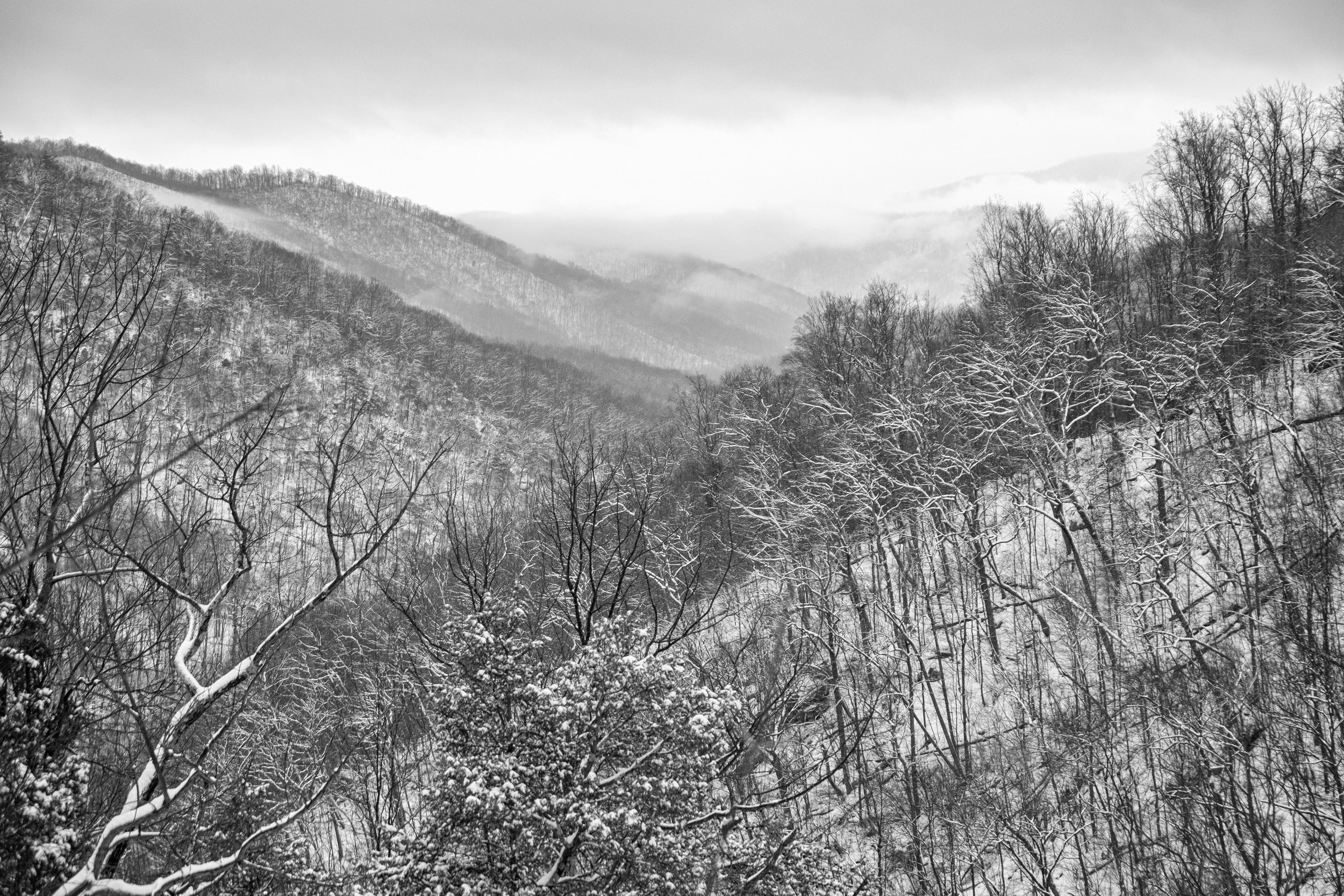 20160215-SP-Shenandoah National Park-279-_DSF2137-Edit.jpg