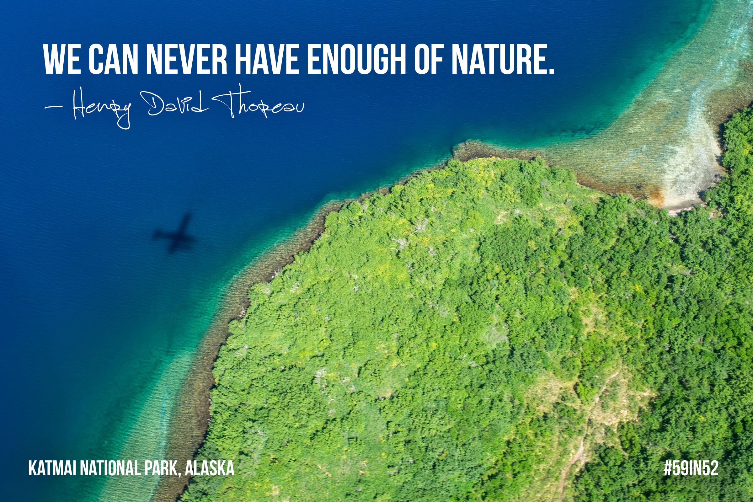 """We can never have enough of nature."" Henry David Thoreau"