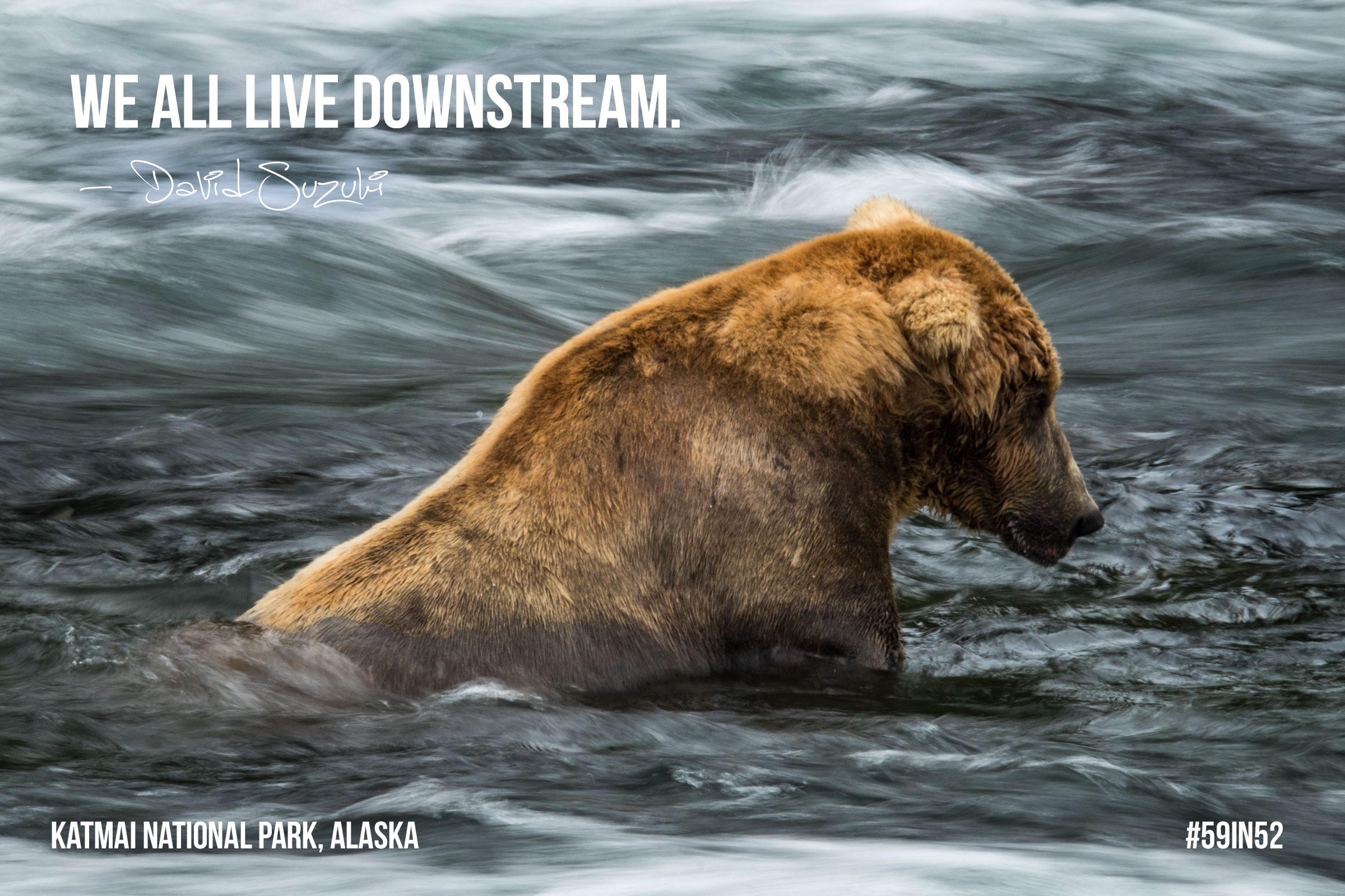 """We all live downstream."" David Suzuki"