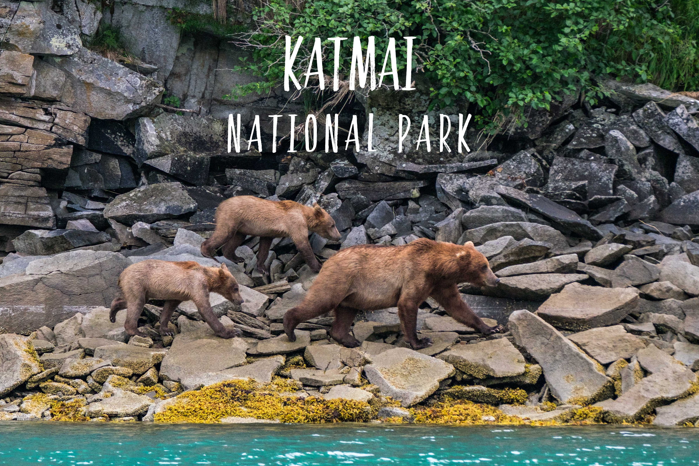 Park 32/59: Katmai National Park in Alaska