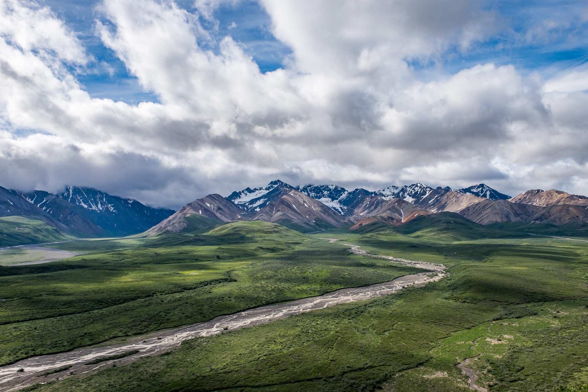 Denali National Park - 011.jpg