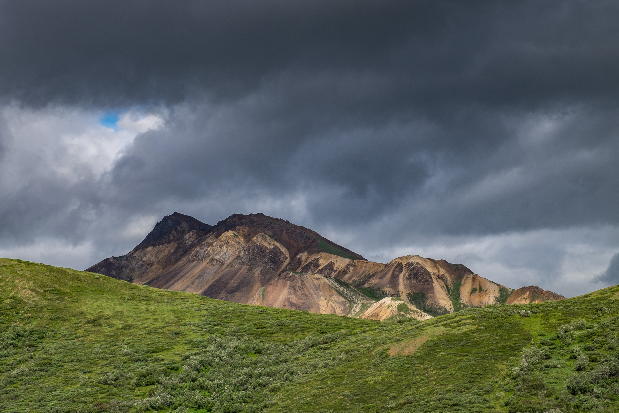 Denali National Park - 013.jpg