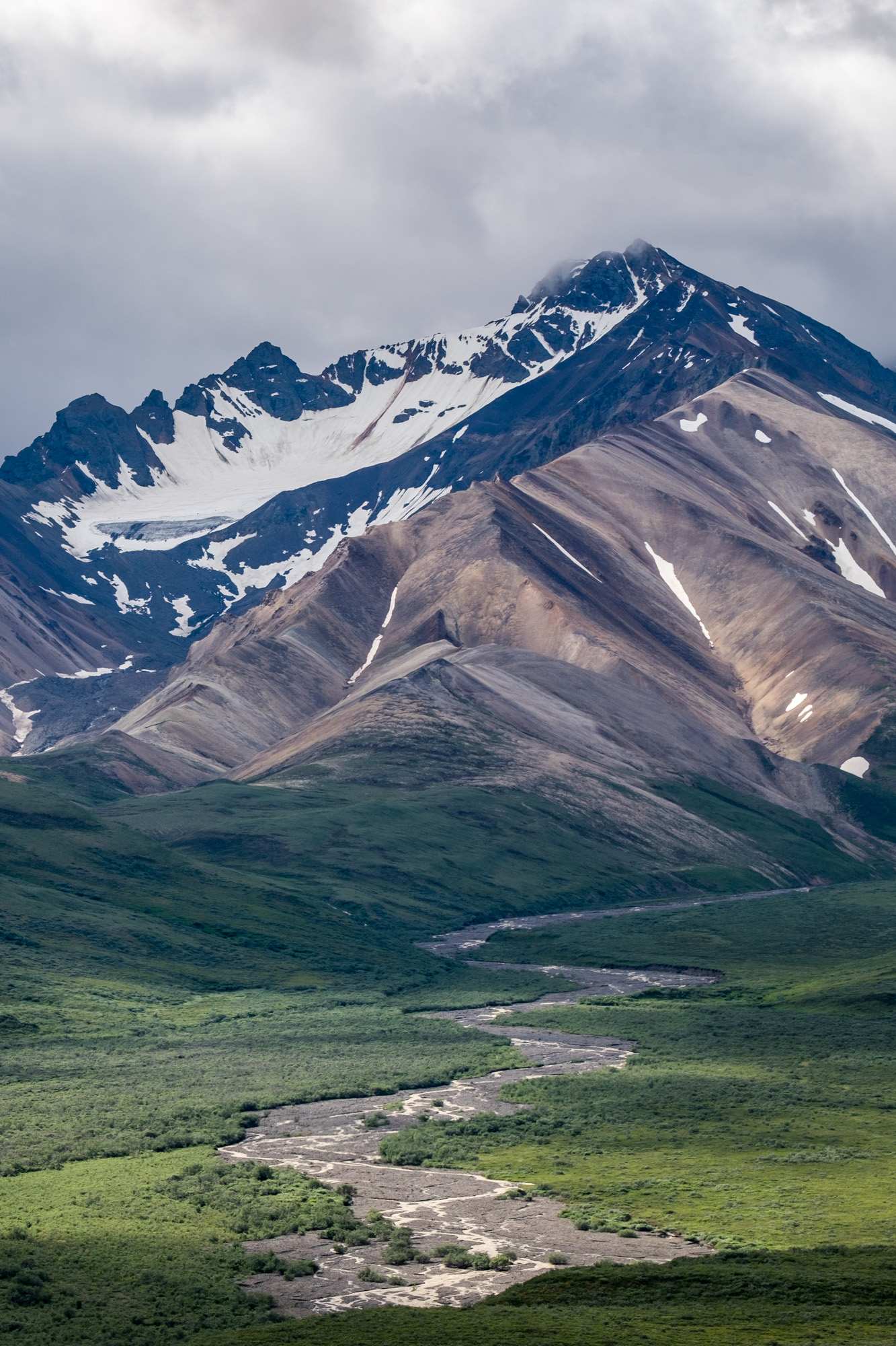 Denali National Park - 015.jpg