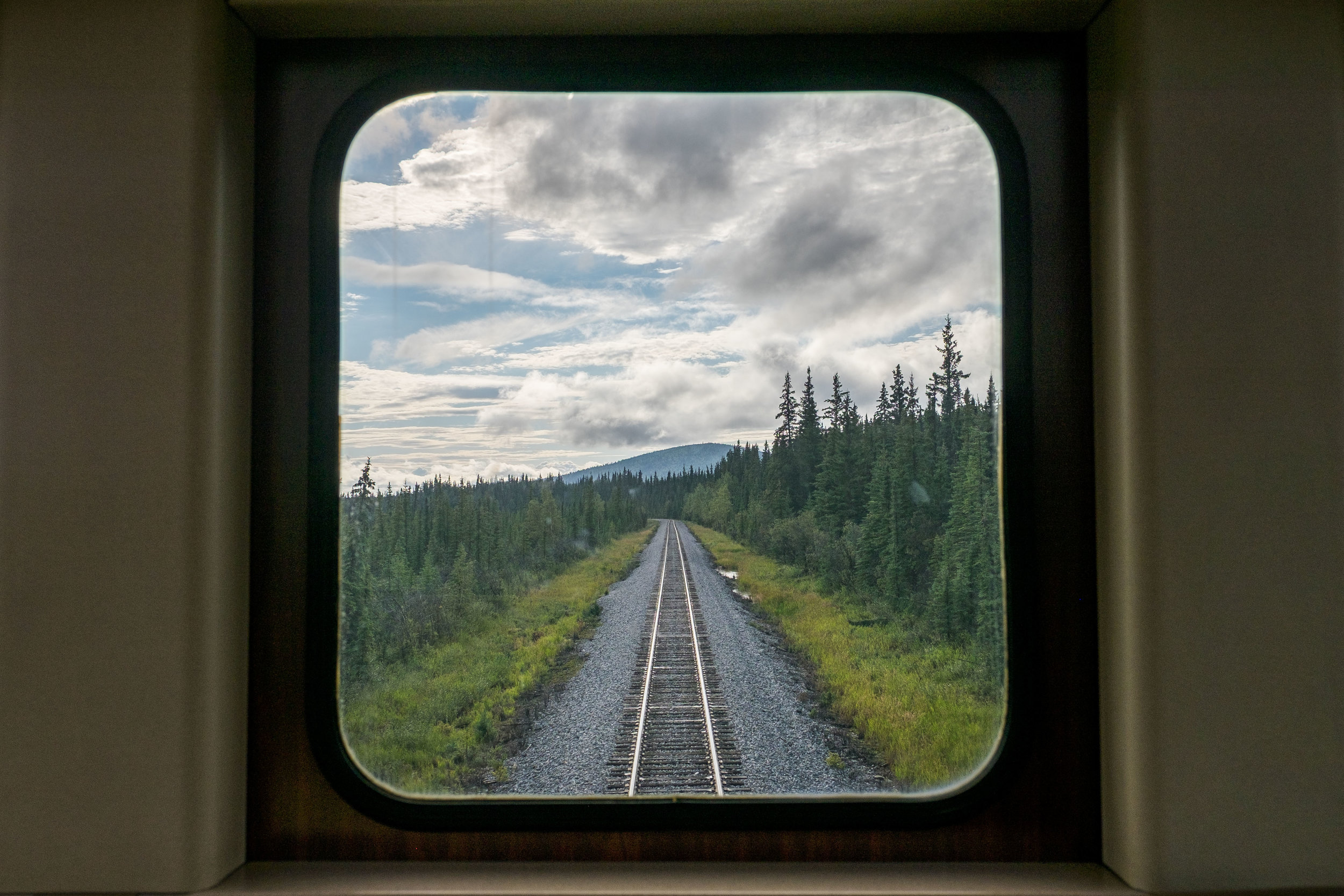 View from the back deck of the Wilderness Express.